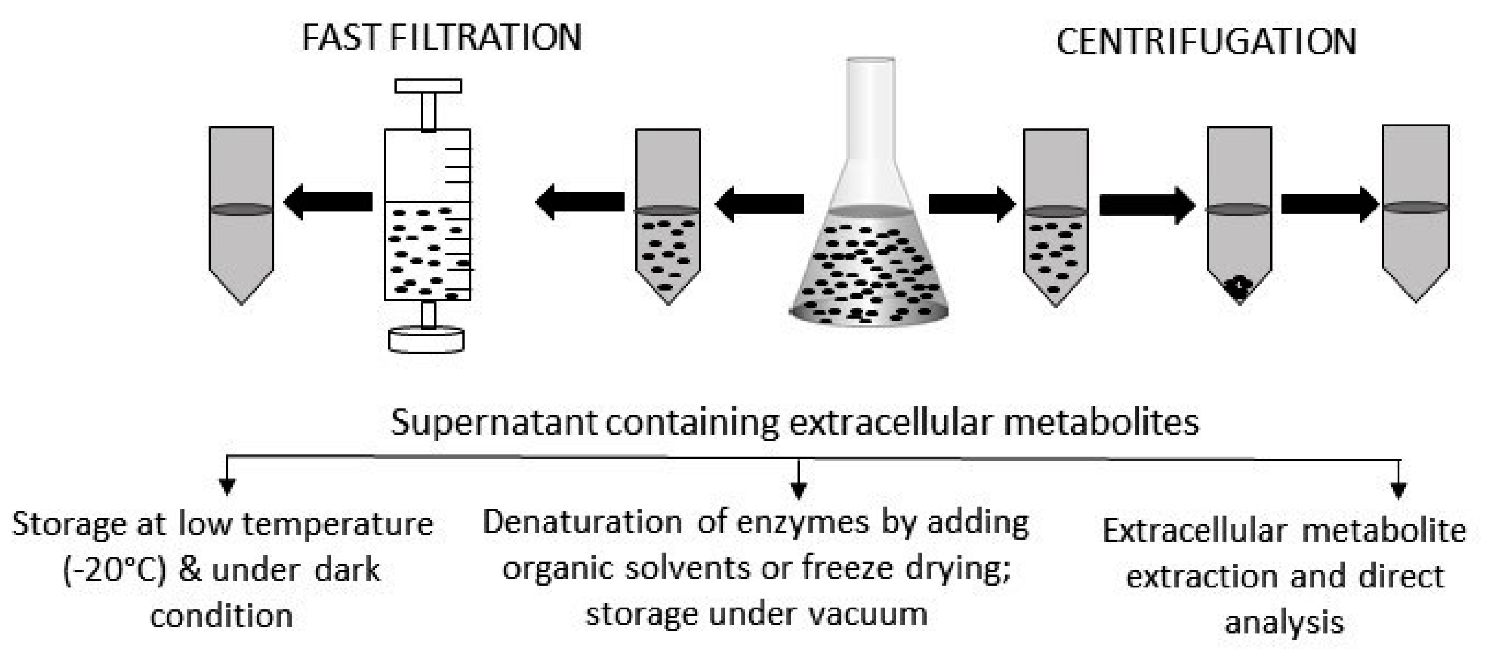 Metabolites | Free Full-Text | Extracellular Microbial