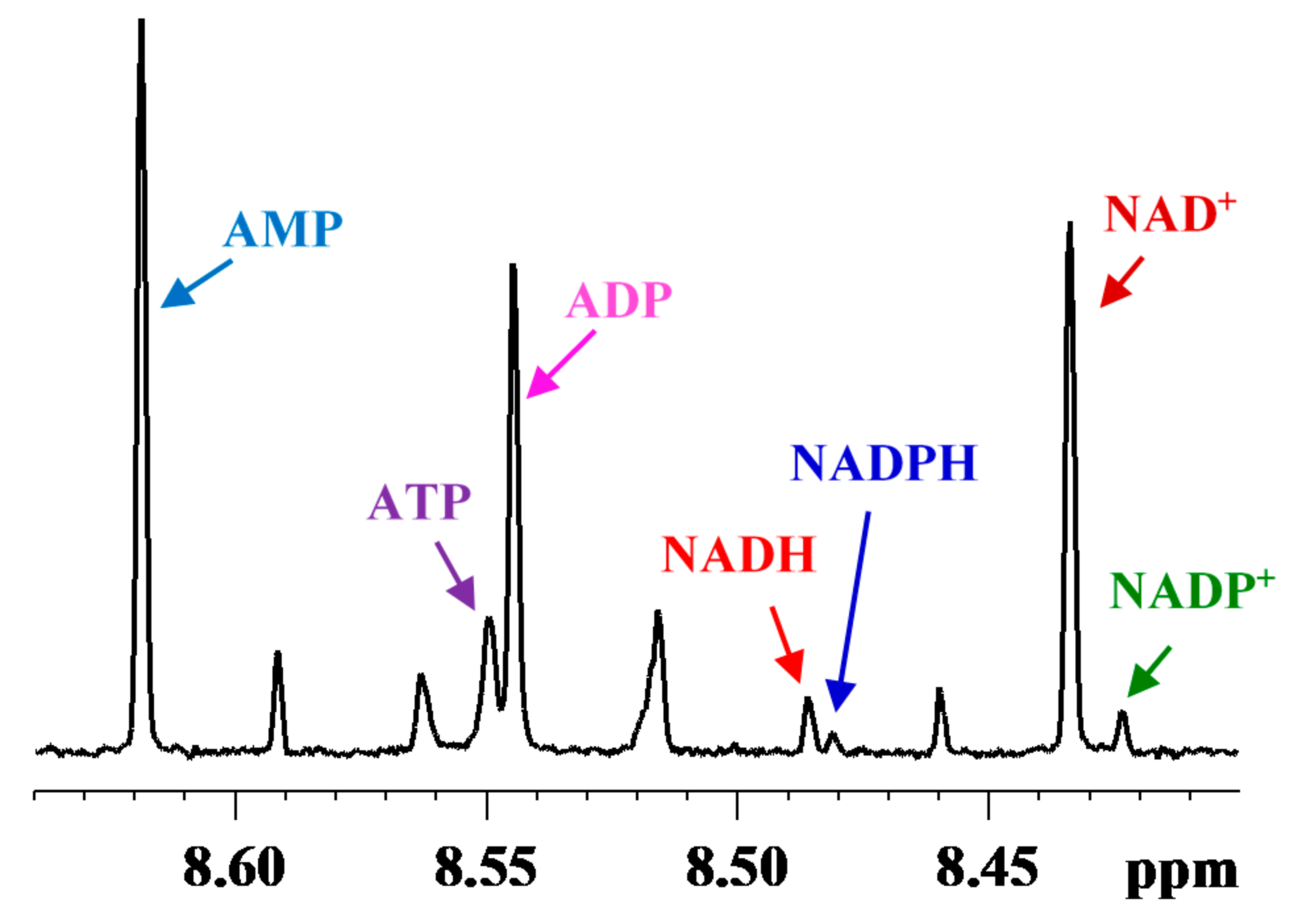 Profiling Redox and Energy Coenzymes in Whole Blood, Tissue and Cells Using NMR Spectroscopy