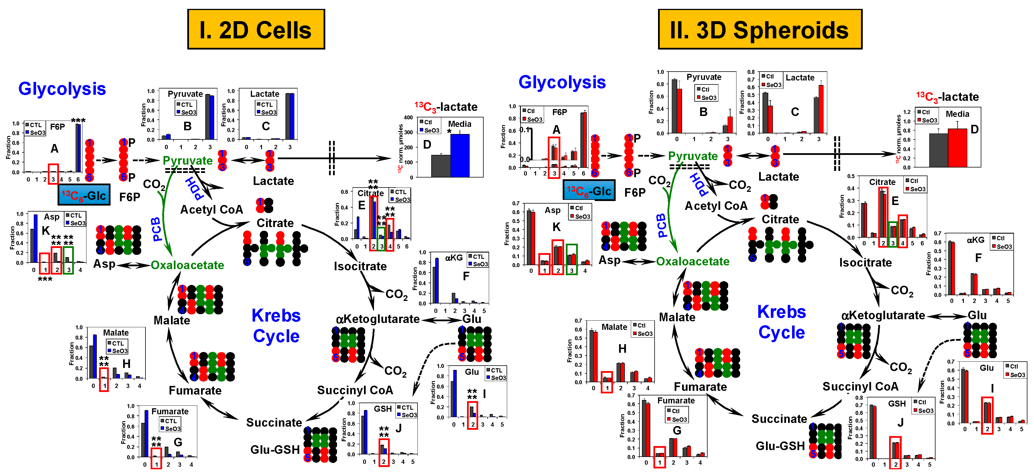 Metabolites | Free Full-Text | Stable Isotope-Resolved