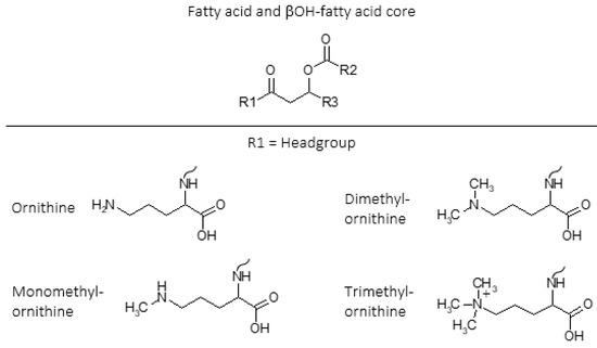 Metabolites 11 00049 g001 550