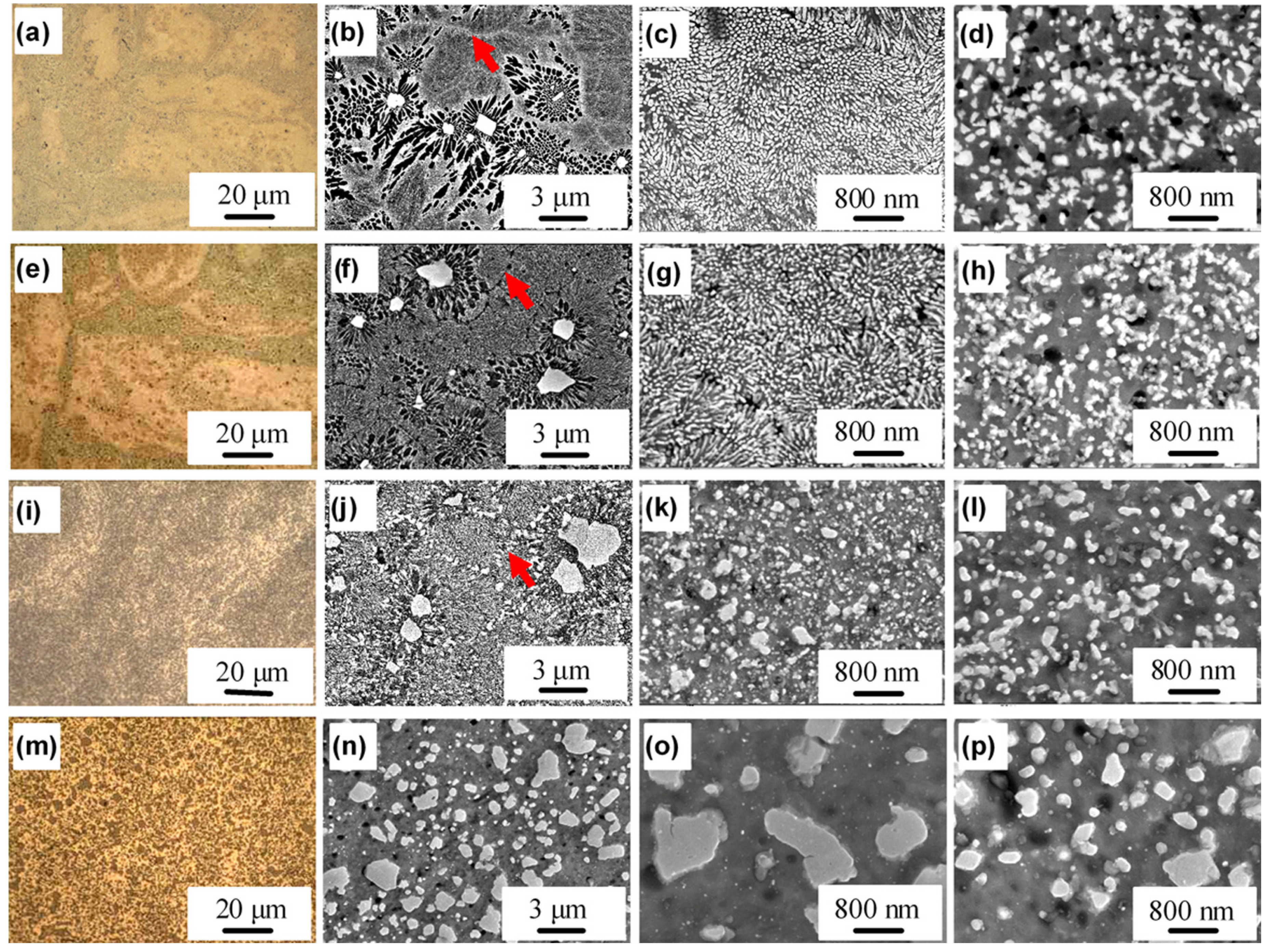 Microstructure of materials