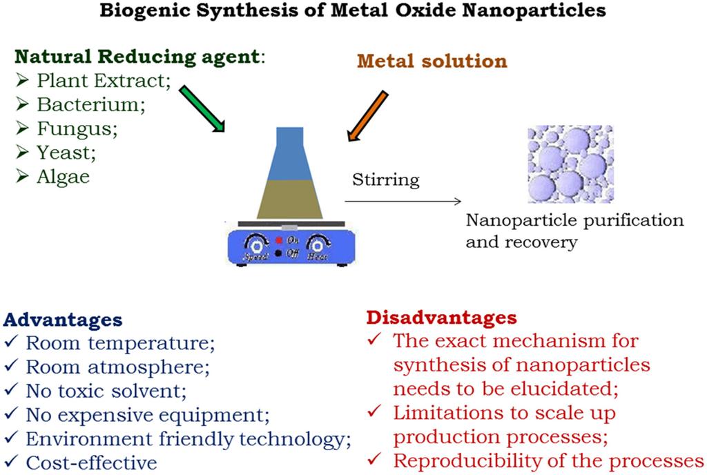 Metals Free Full Text Nanotoxicology Of Metal Oxide
