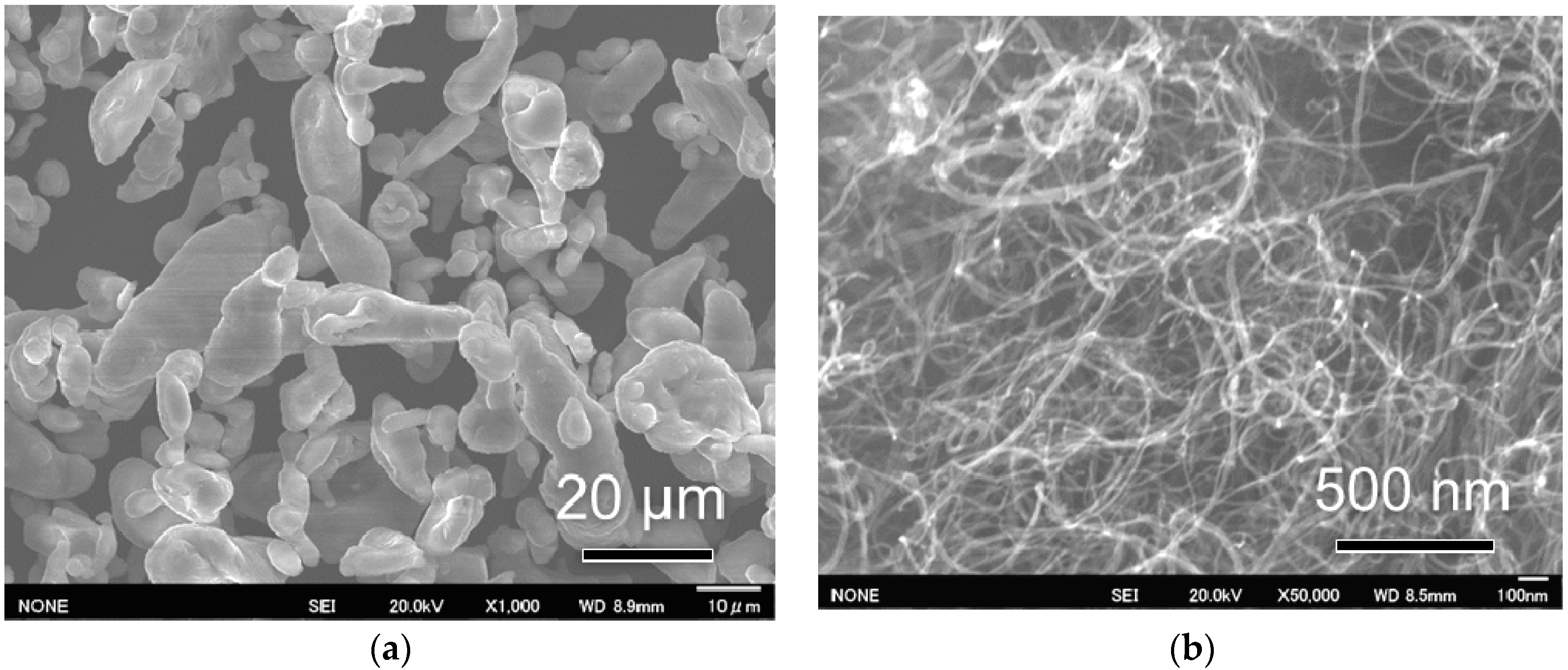 Mining for Gold and Copper using Biohydrometallurgy