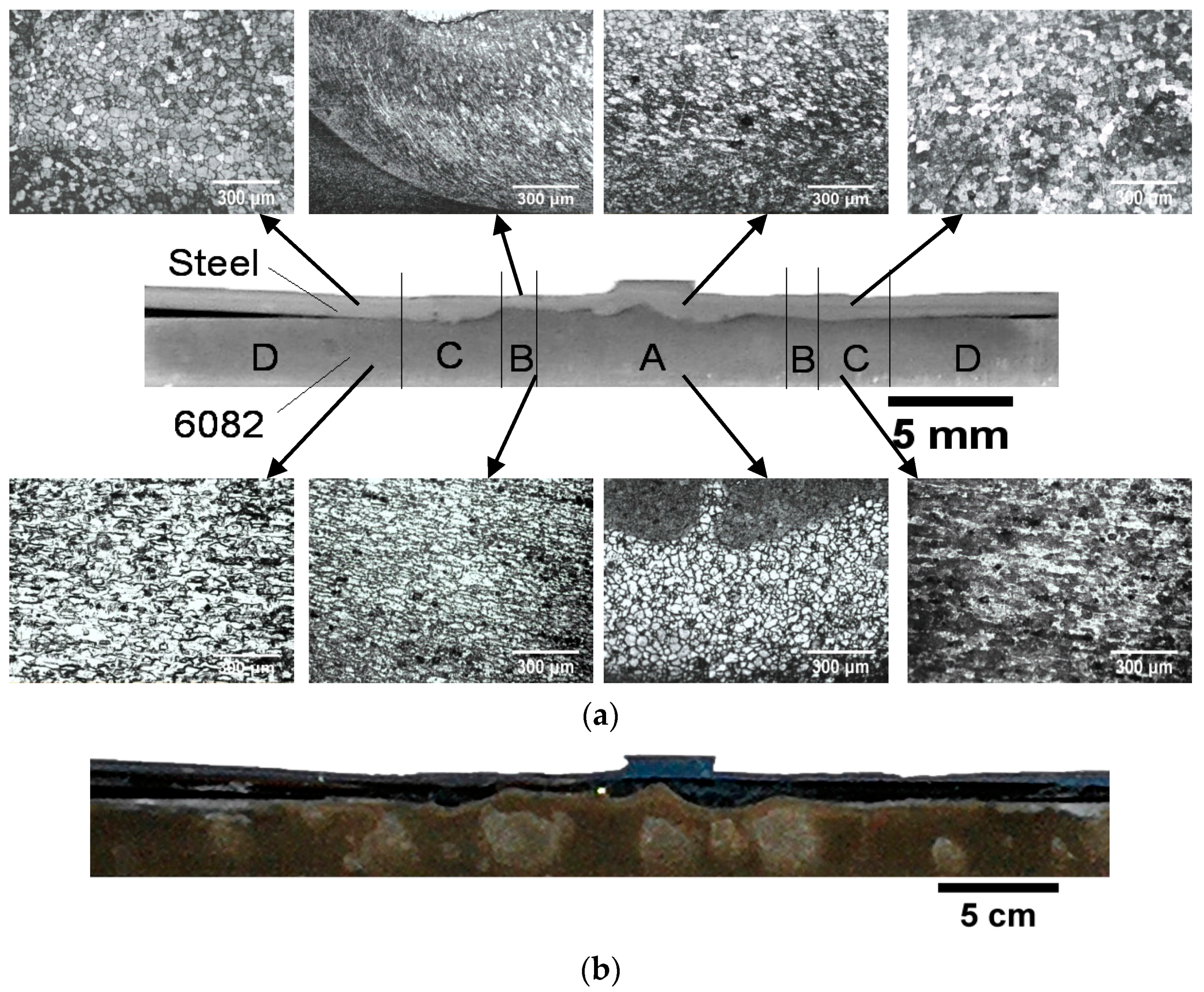 Corrosion of steel lab report