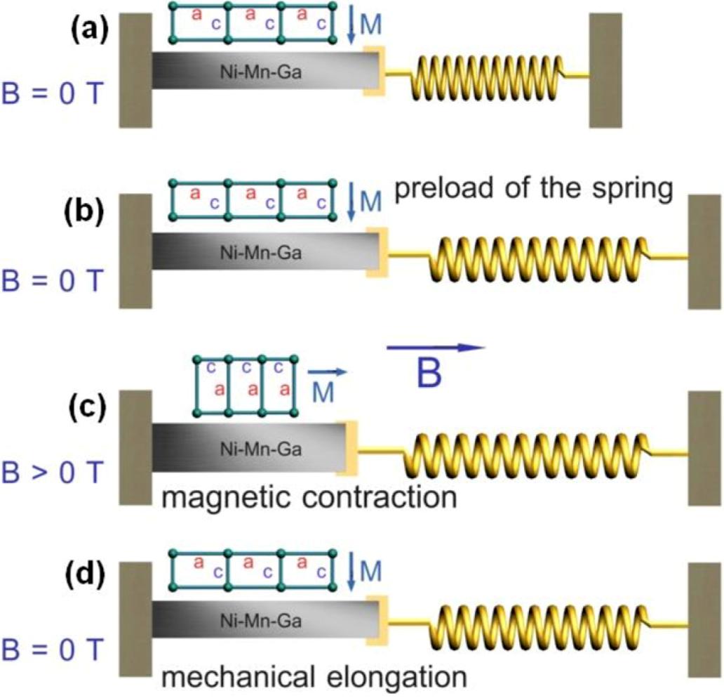 download quantum dots applications in
