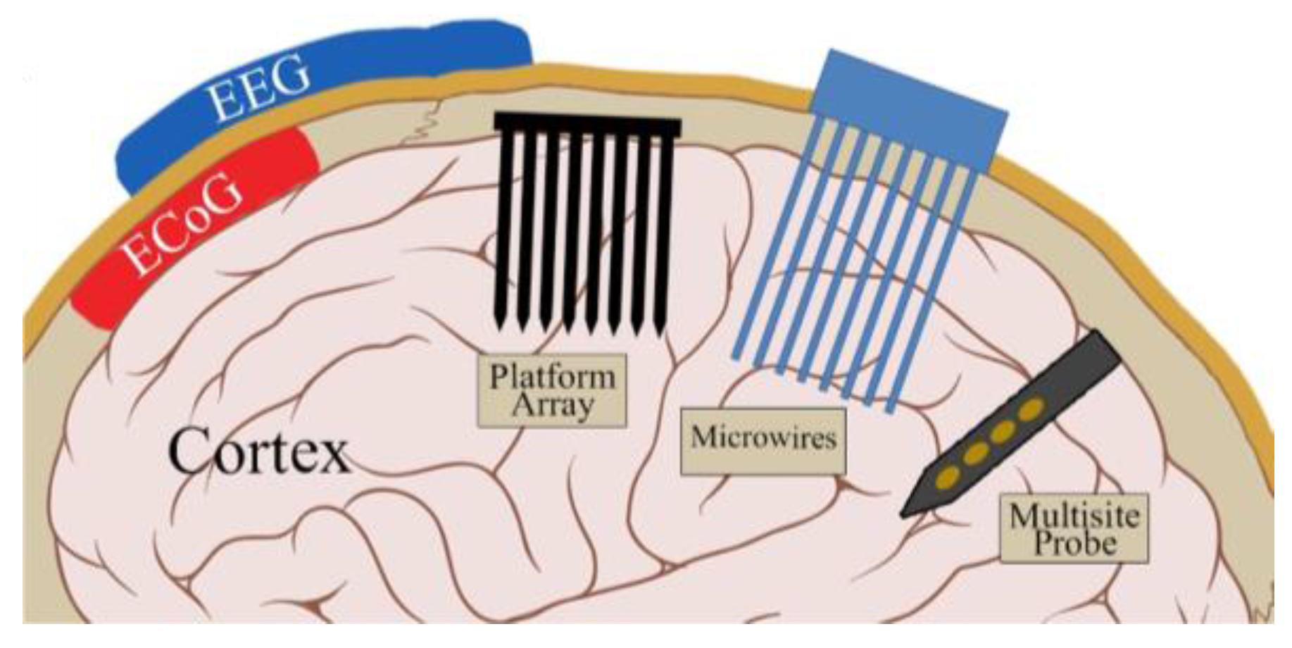 Micromachines | Free Full-Text | Flexible, Penetrating Brain Probes ...