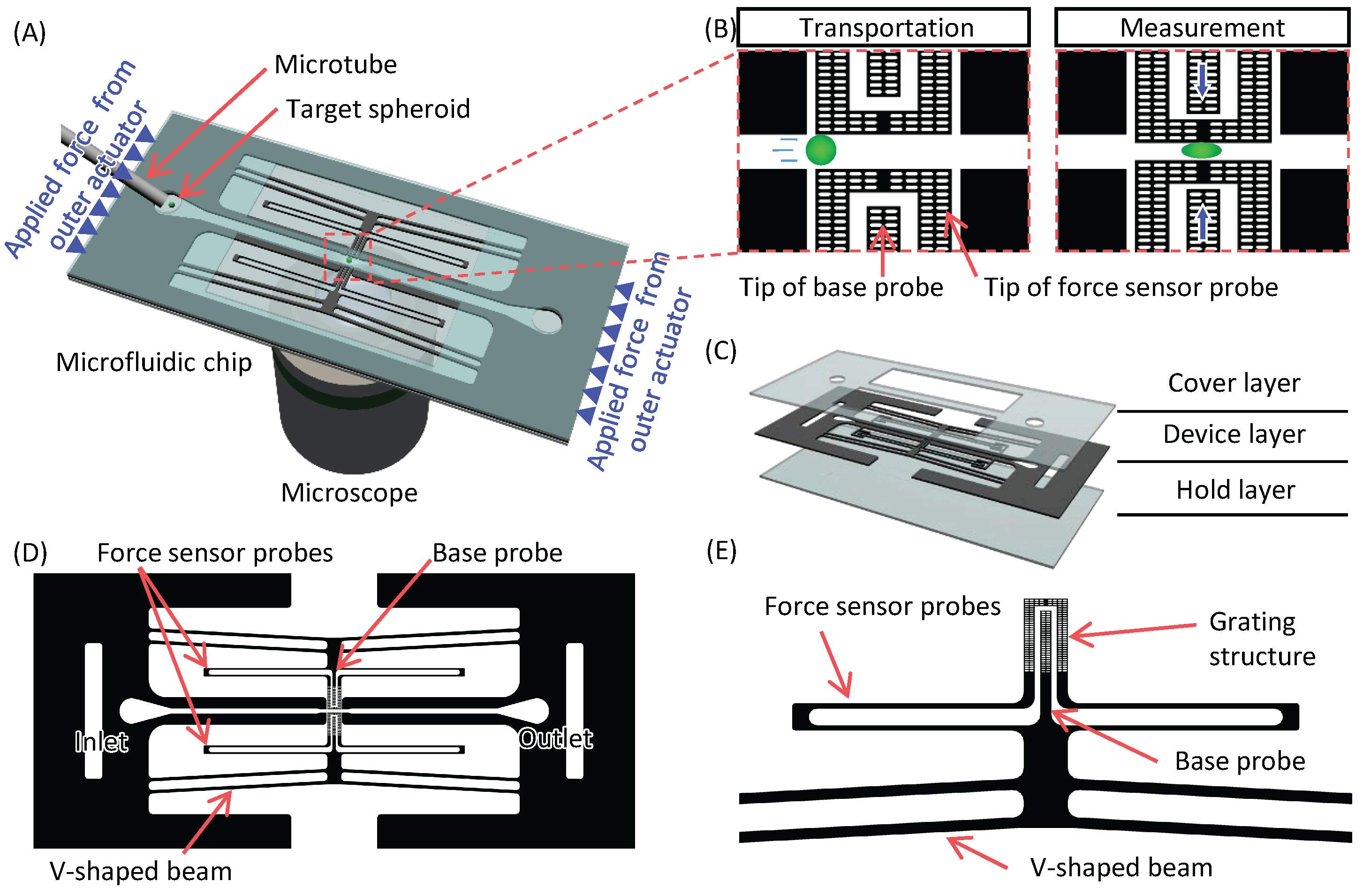Micromachines | Free Full-Text | Temporal Transition of Mechanical ...