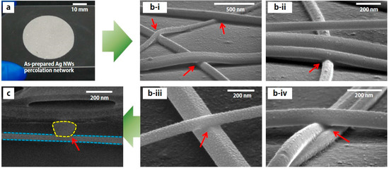 Charmant Micromachines | Special Issue : Flexible And Stretchable Electronics