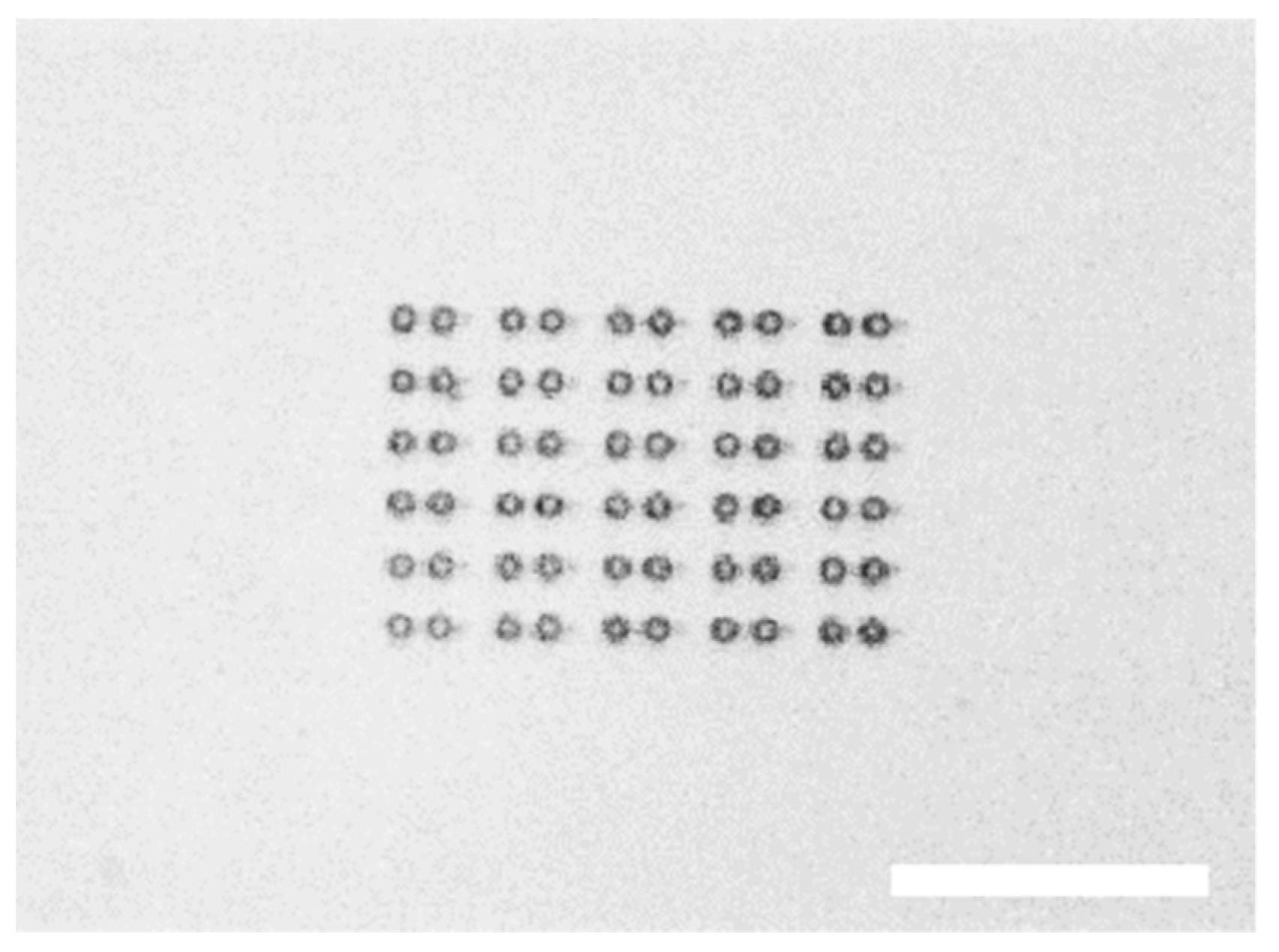 Micromachines Free Full Text Micro Dumbbellsa Versatile Tool