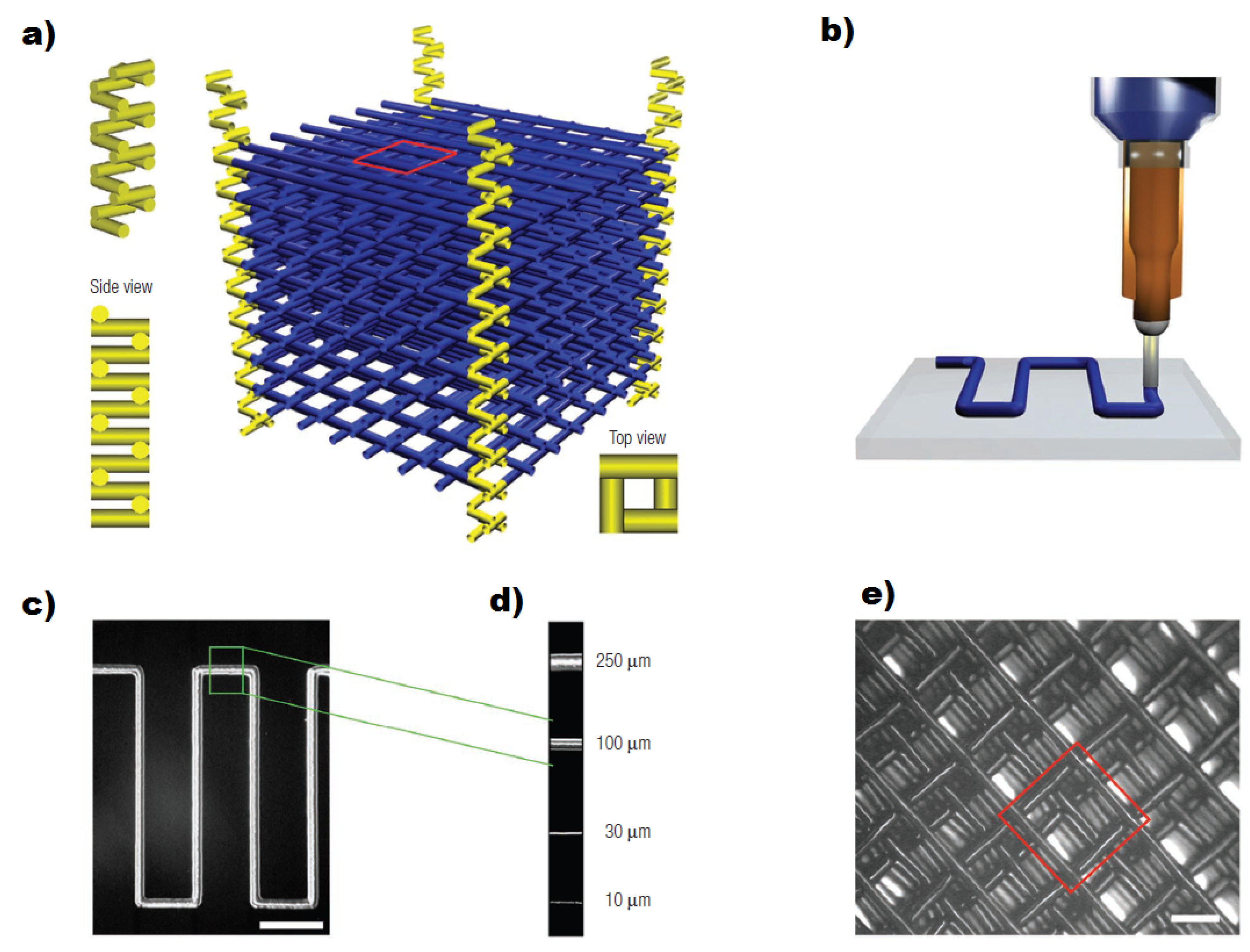 microfluidic devices for biomedical applications