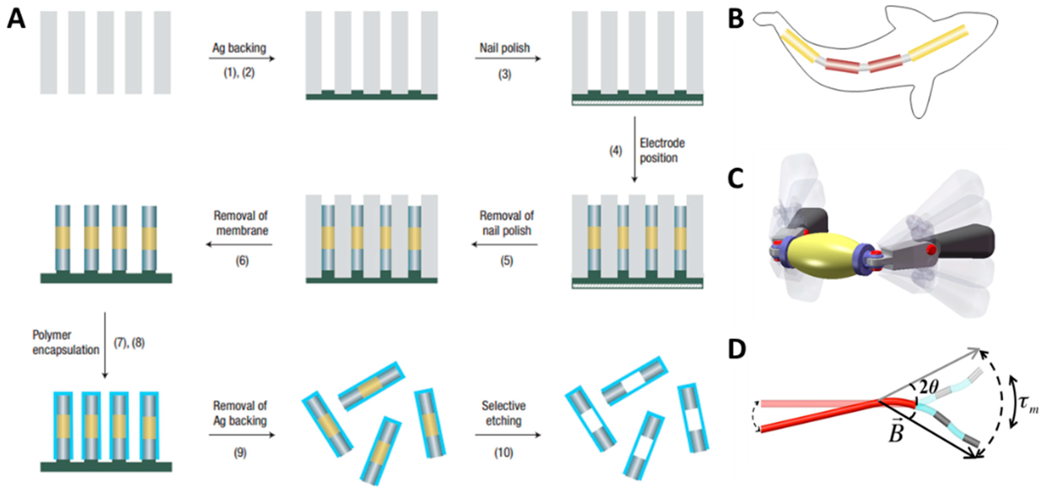 Micromachines | Free Full-Text | Micro-/Nanorobots Propelled