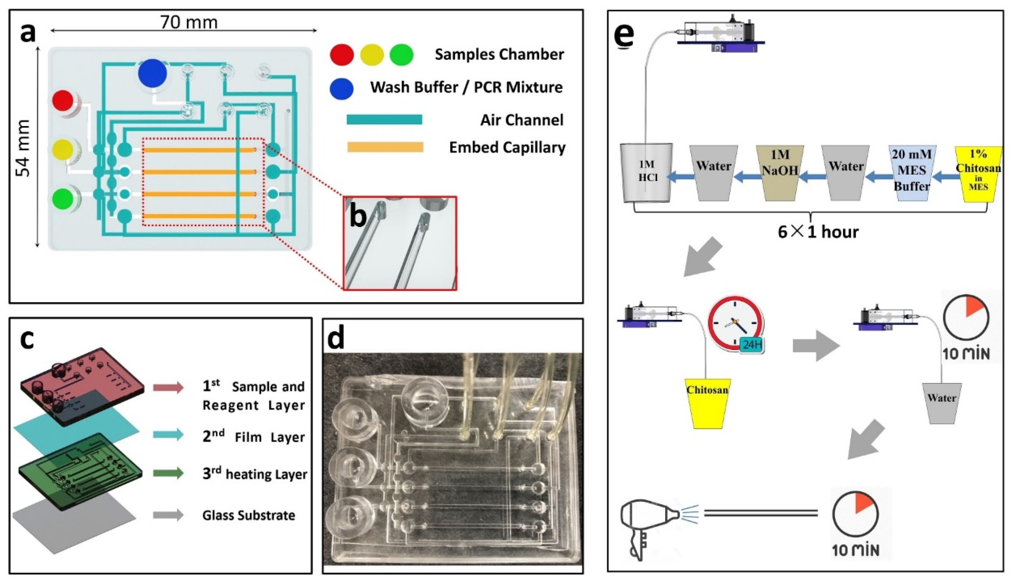 Micromachines Free Full Text A Novel Microfluidic Device Integrated With Chitosan Modified Capillaries For Rapid Zikv Detection Html