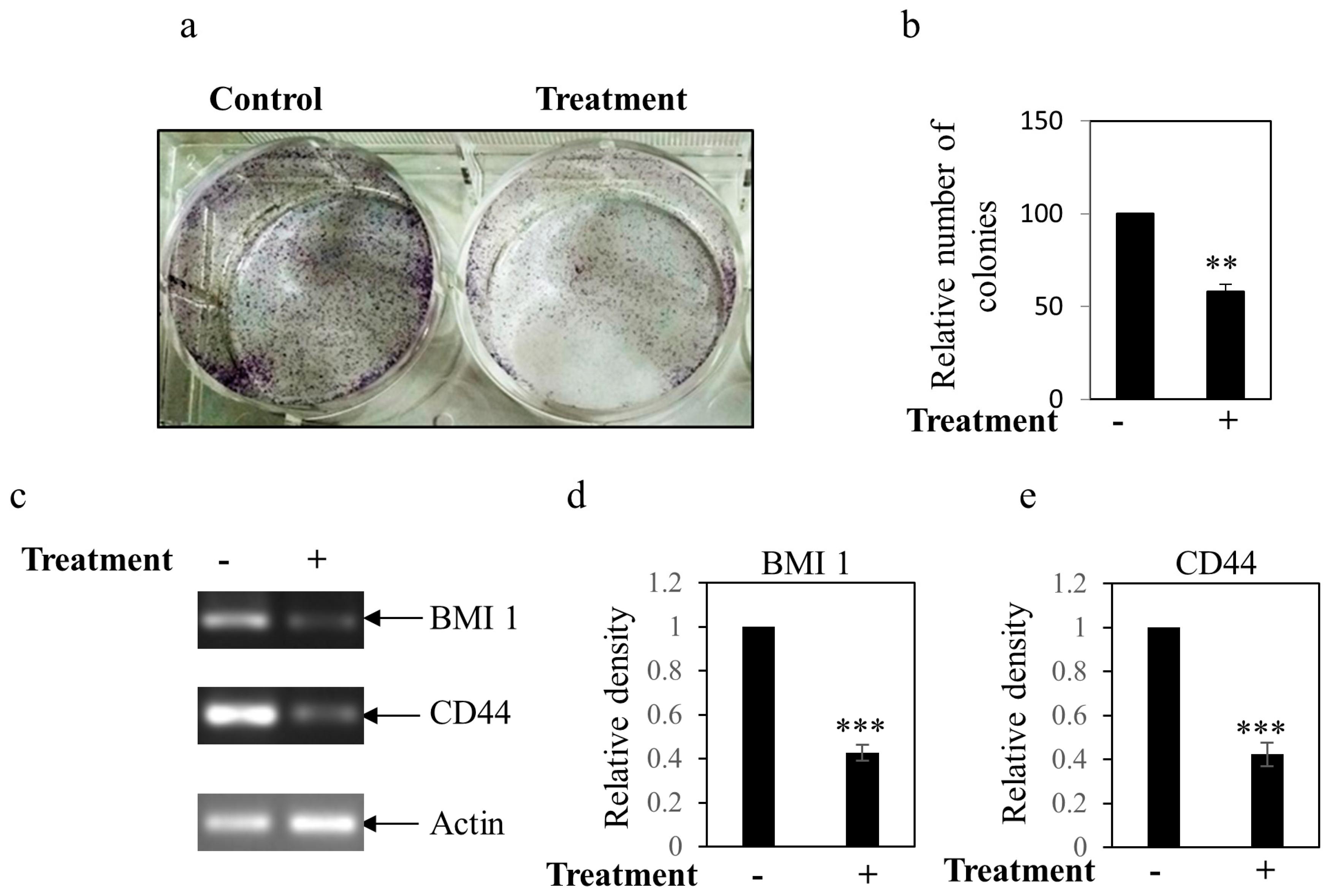 Microorganisms   Free Full-Text   A Piscibacillus sp
