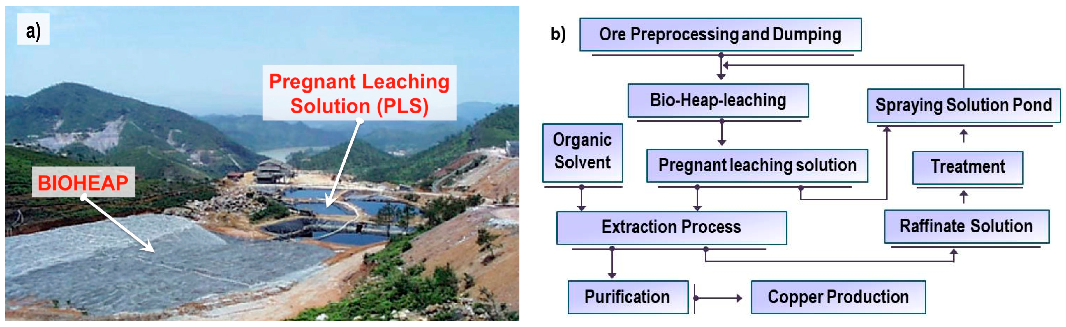 bioleaching of gold ores How does bio heap leaching work zinc and refractory gold ores are all suited to bioheap leaching application of heap bioleaching of refractory gold ores.
