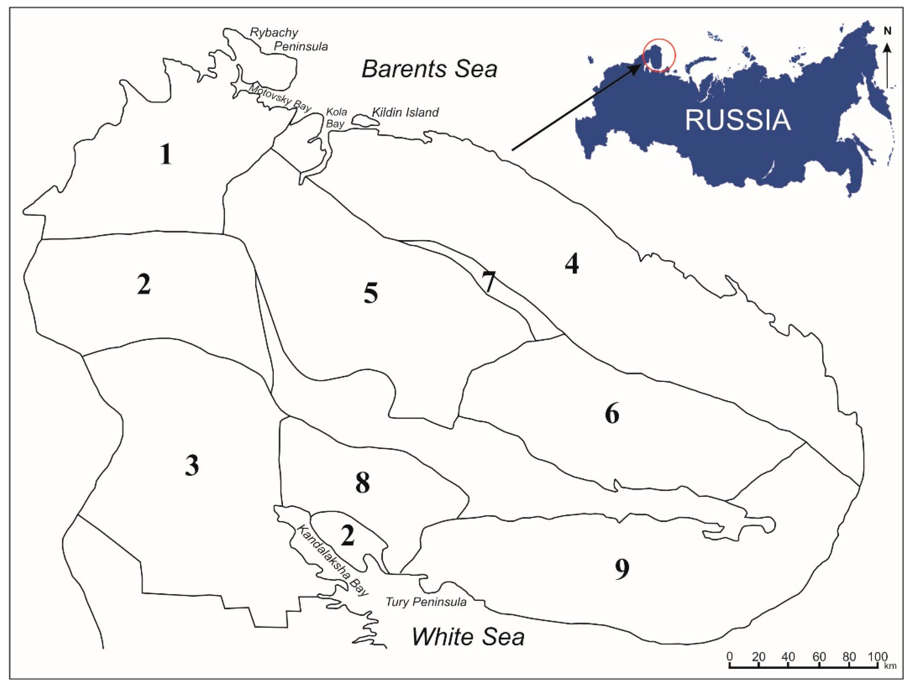 and Metallogeny Structure Granites: Petrology Geological Setting