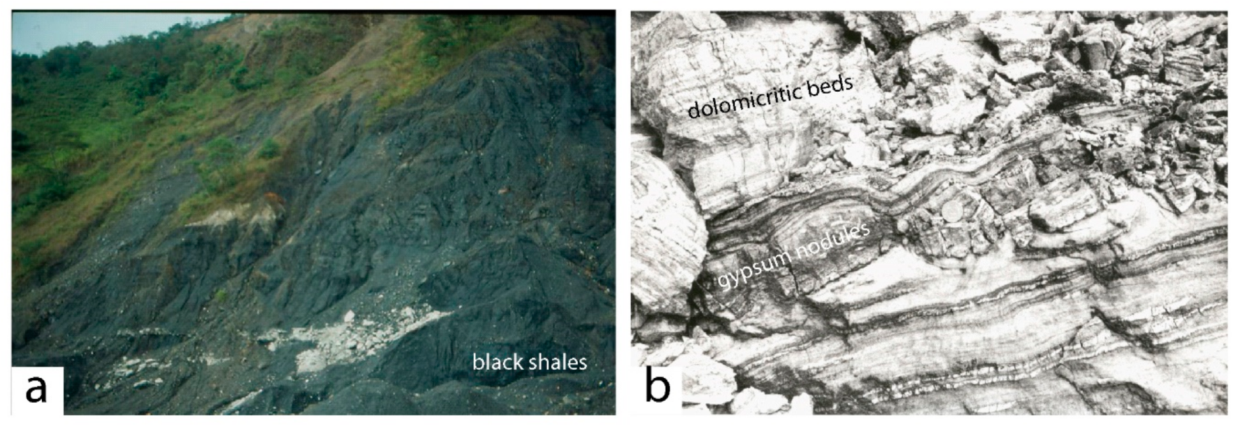 Minerals | Free Full-Text | Emerald Deposits: A Review and Enhanced