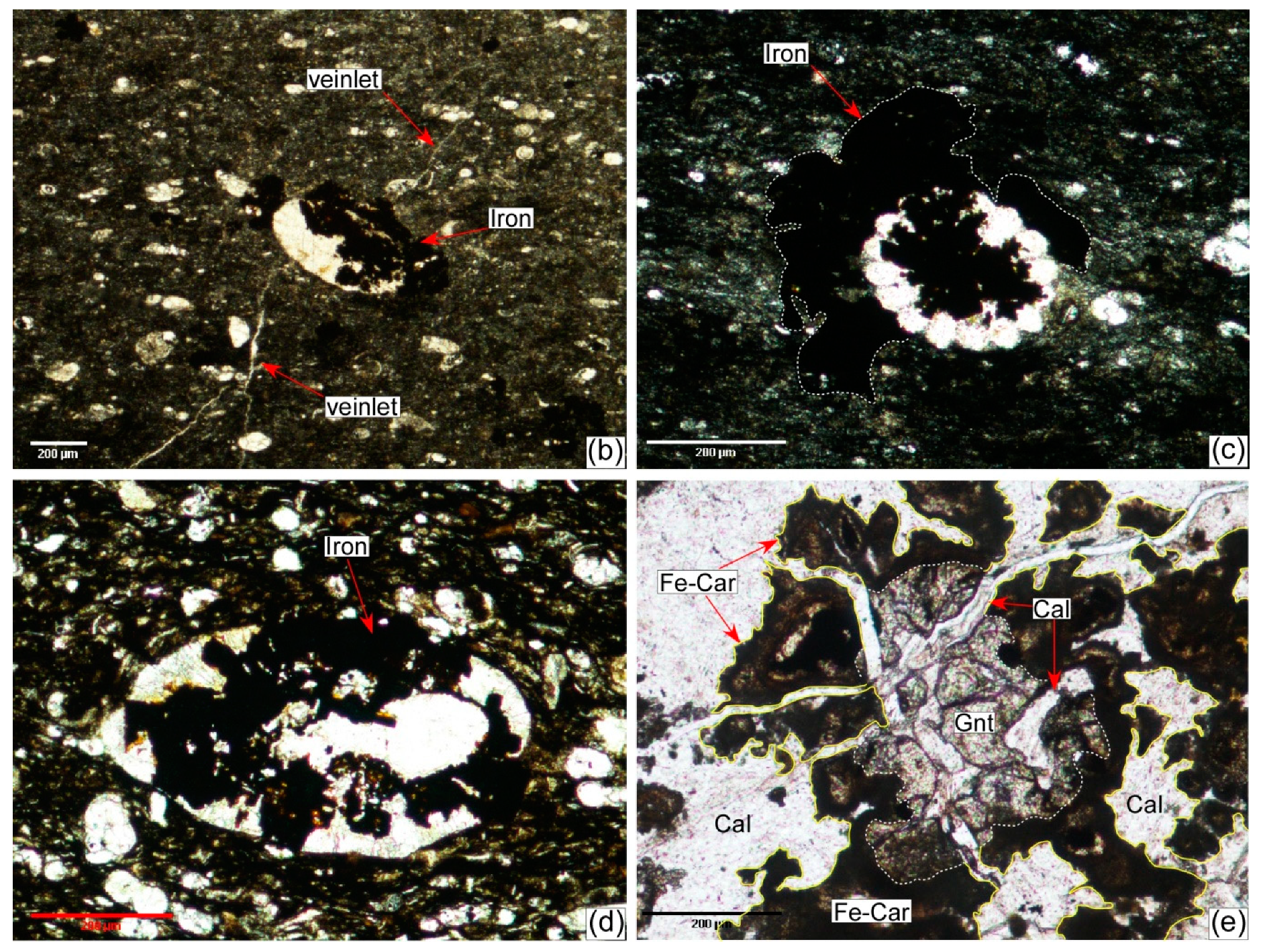 Minerals Free Full Text Thermal Alteration Of Organic