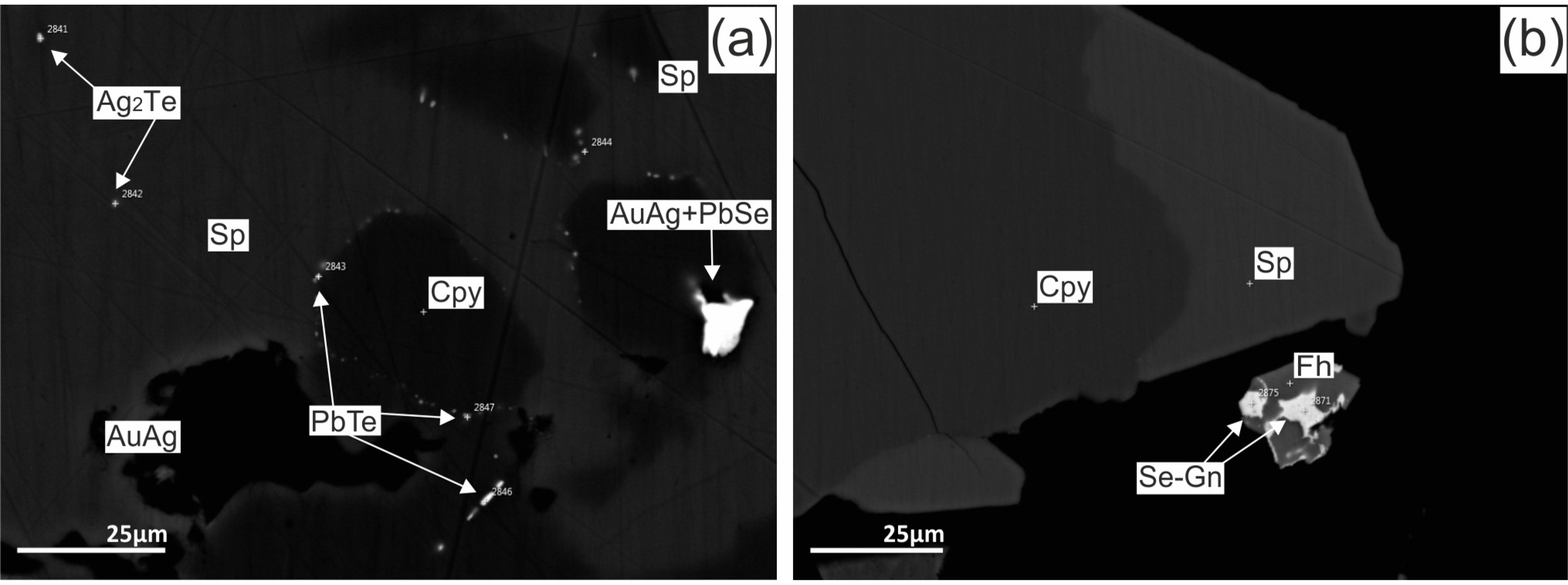 Minerals | Free Full-Text | Au and Te Minerals in Seafloor