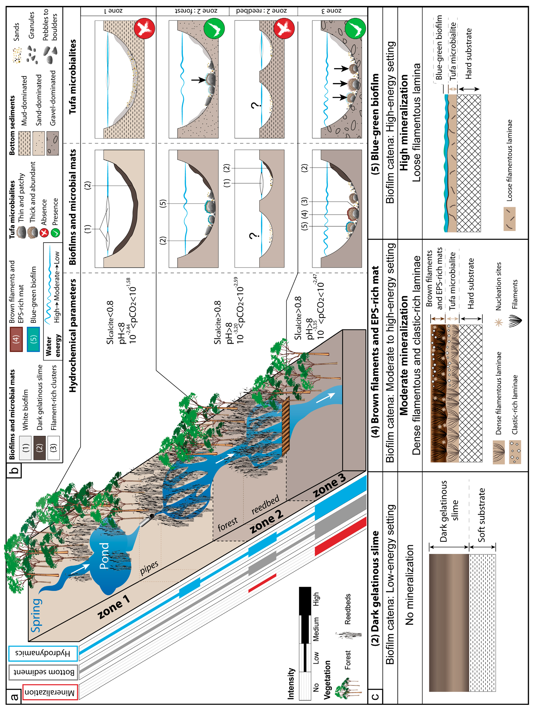 Minerals | Free Full-Text | The Role of the Substrate on the