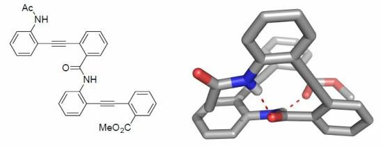 Methyl 2-2-{2-2-acetamidophenylethynylbenzamido} phenylethynylbenzoate