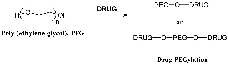 POLYMER DRUG CONJUGATES PDF DOWNLOAD
