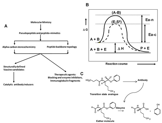 Molecules   Special Issue : Solid Phase Synthesis