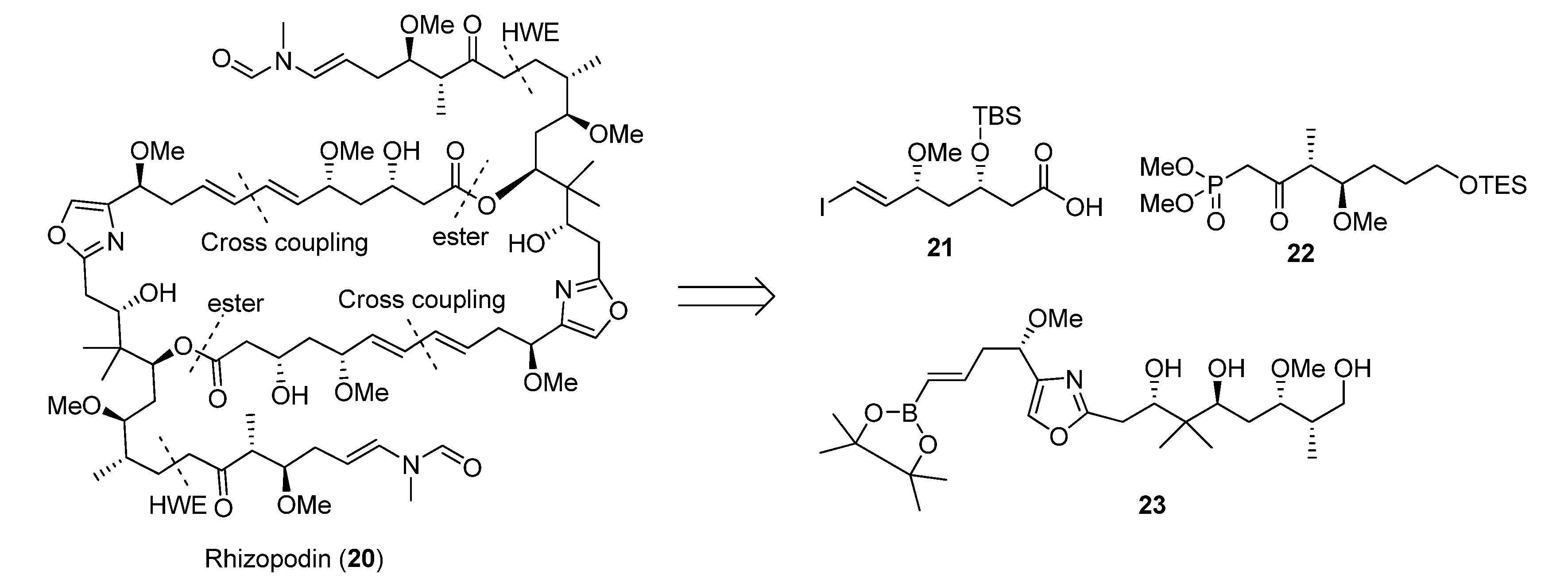 ring opening metathesis polymerization norbornene Optimized ring-opening metathesis polymerization (romp) conditions for cyclohexenyl norbornene (chnb) have been determined romp of chnb was carried out with ruthenium trichloride hydrate and ruthenium benzylidene catalysts.