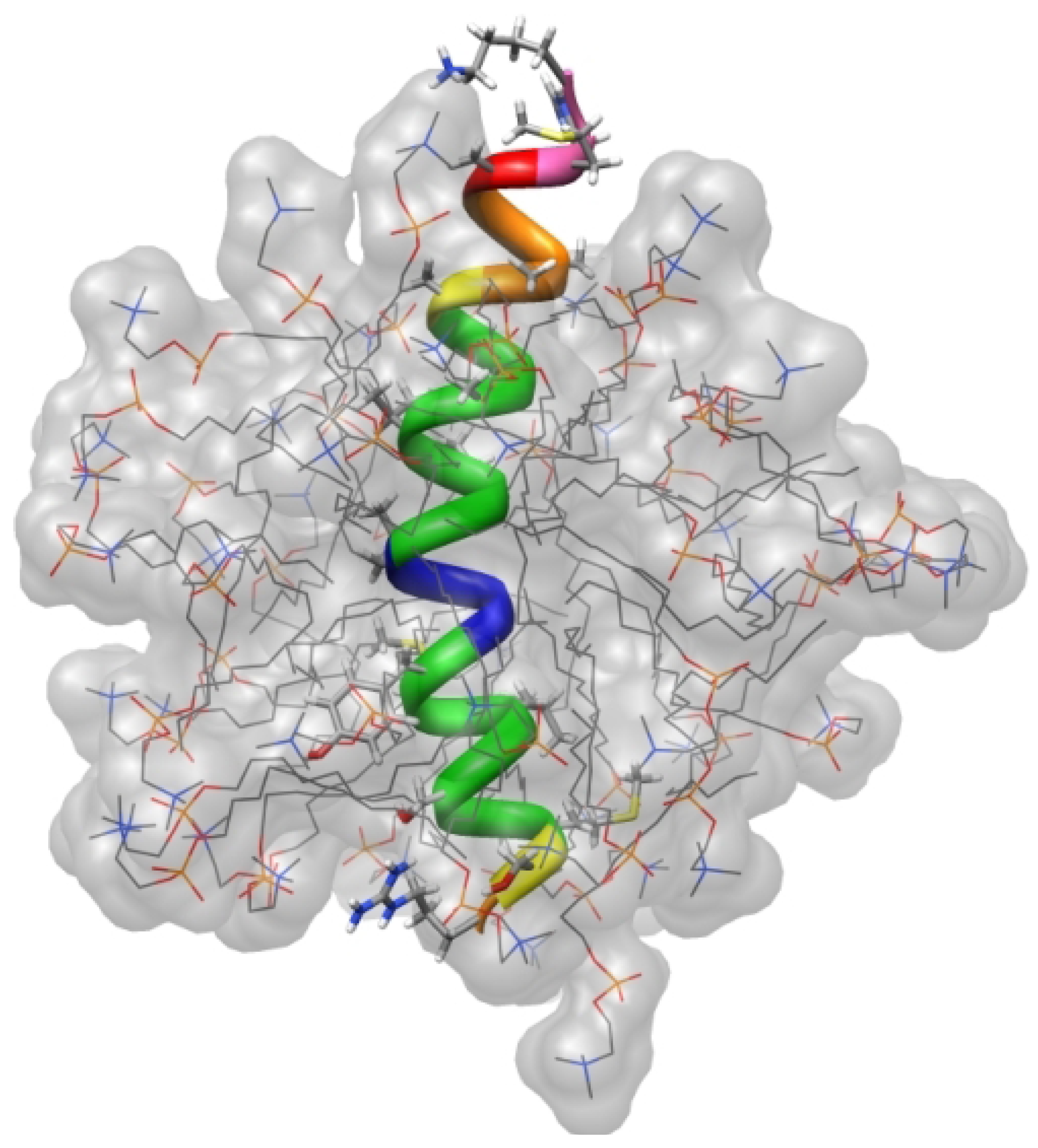 Molecules | Free Full-Text | Solution NMR Studies on the ...