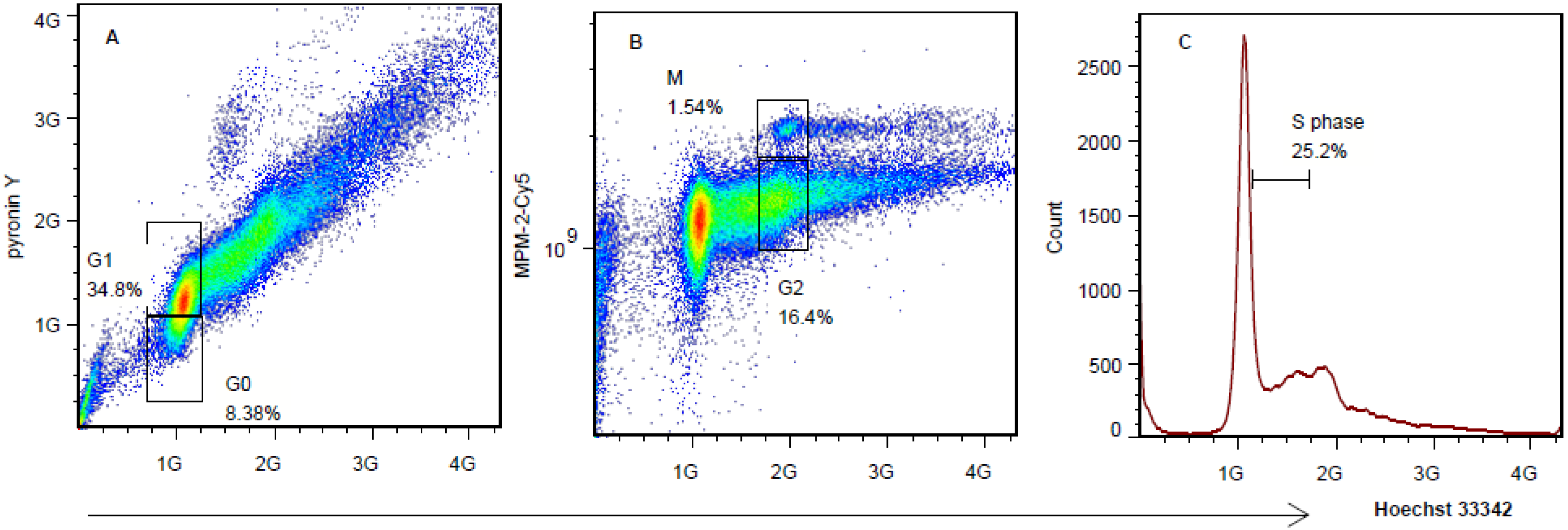 A Triple Staining Method for Accurate Cell Cycle Analysis Using Multiparameter Flow Cytometry