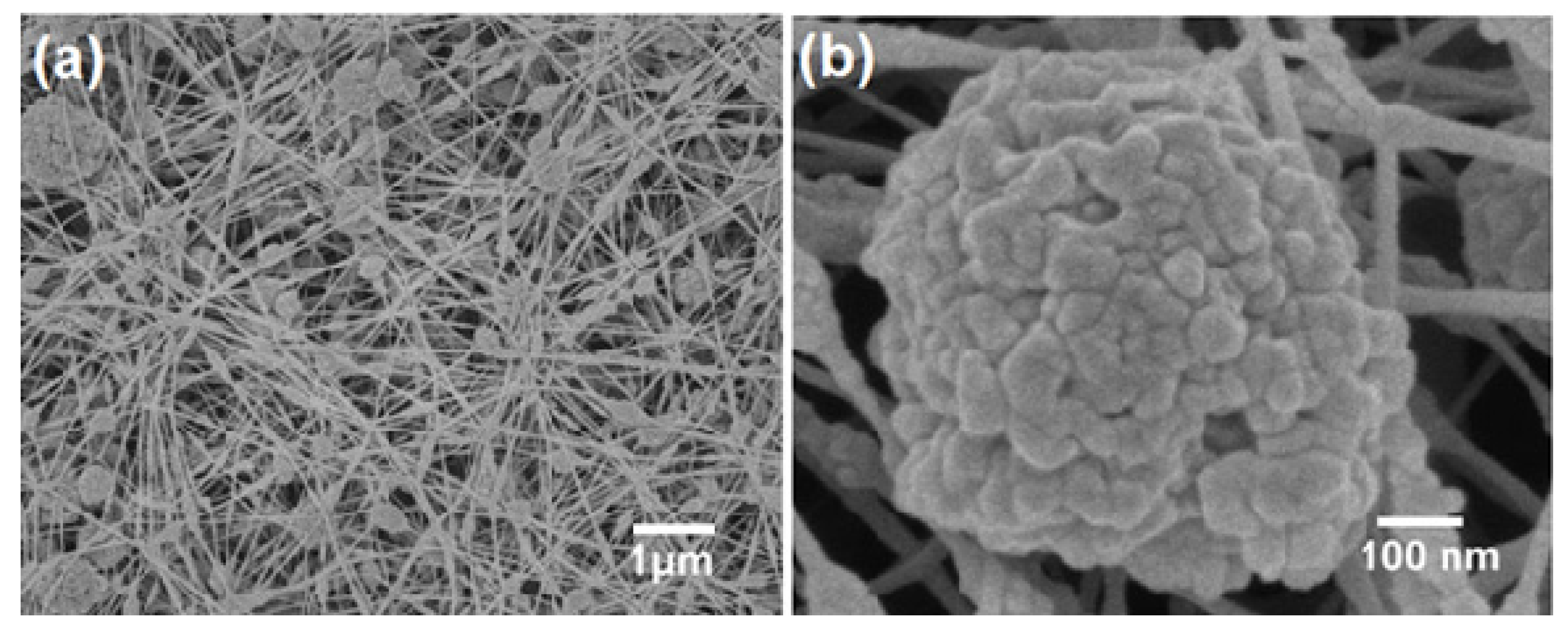Molecules free full text superhydrophobic surfaces developed by no izmirmasajfo