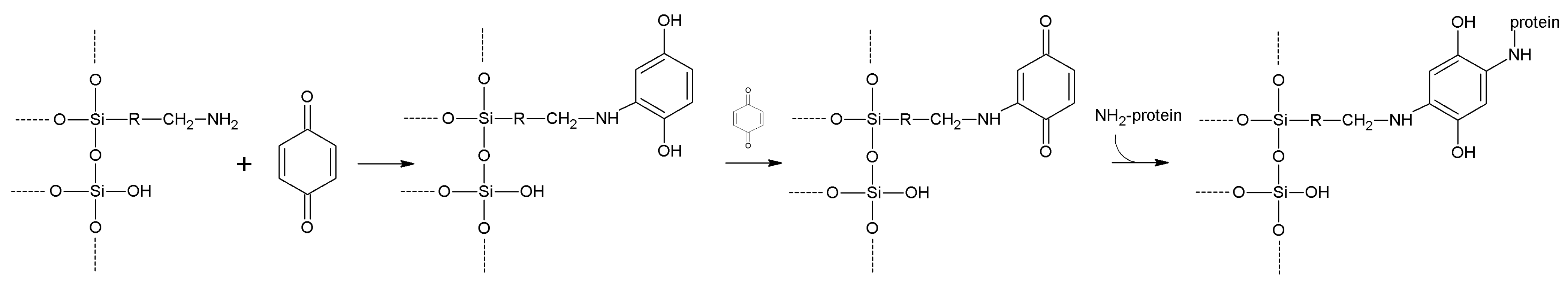 Molecules Free Full Text Inorganic Materials As Supports For