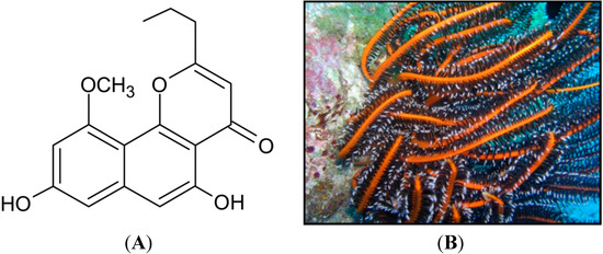 Molecules | September 2014 - Browse Articles