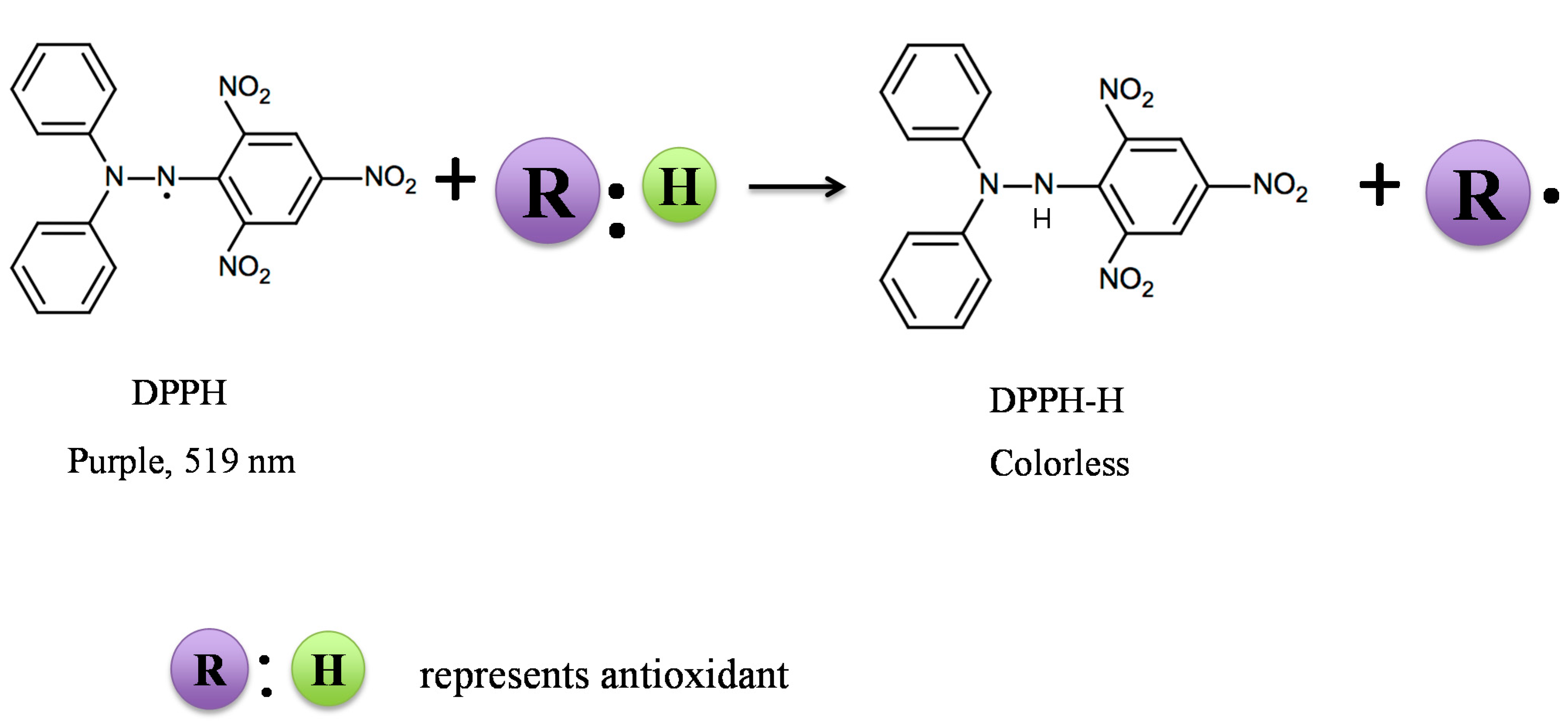 Molecules Free Full Text Antioxidant Property Of