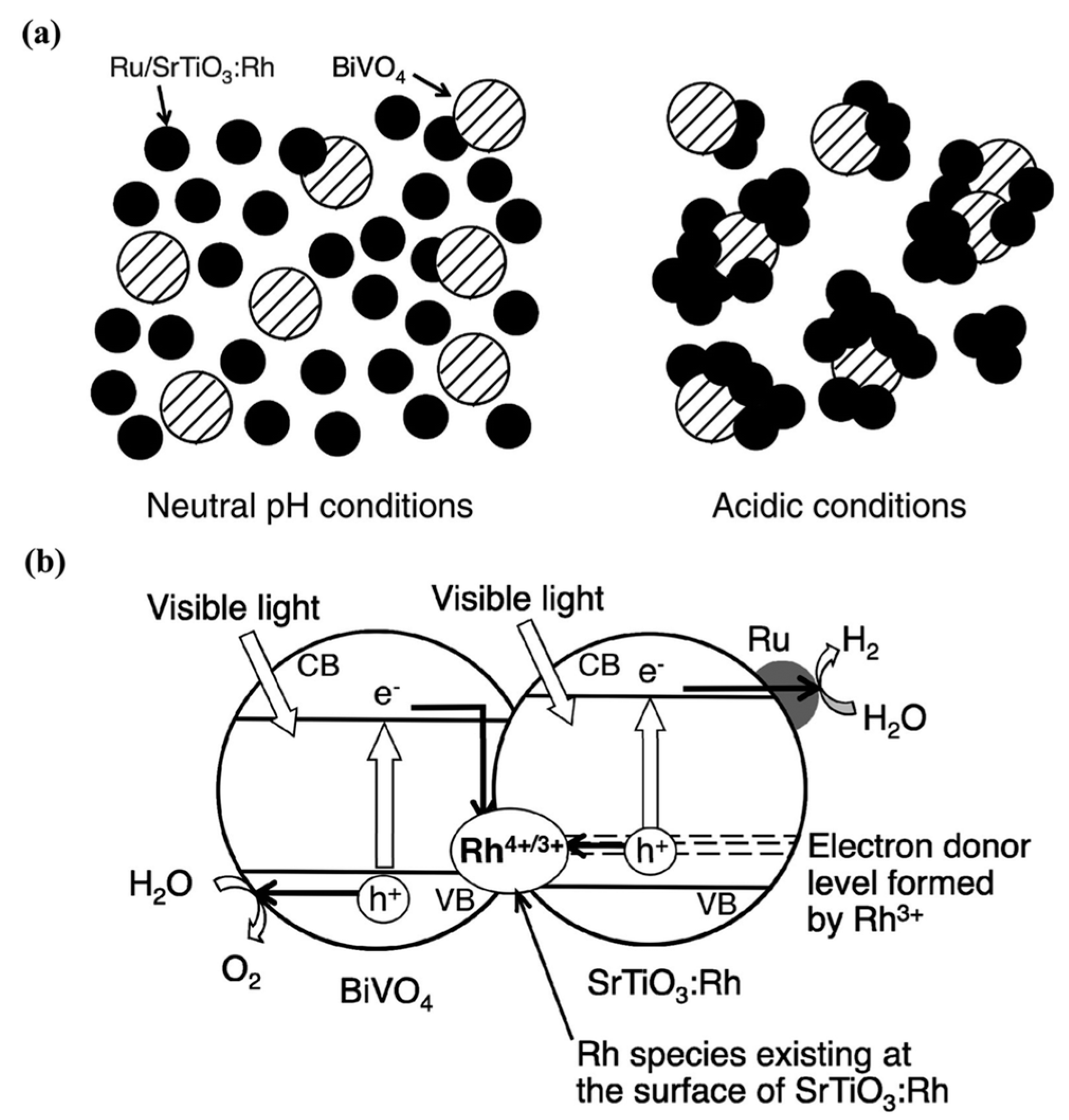 Molecules | Free Full-Text | A Review on Visible Light