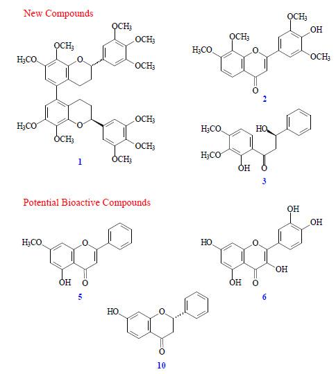 Molecules | December 2014 - Browse Articles