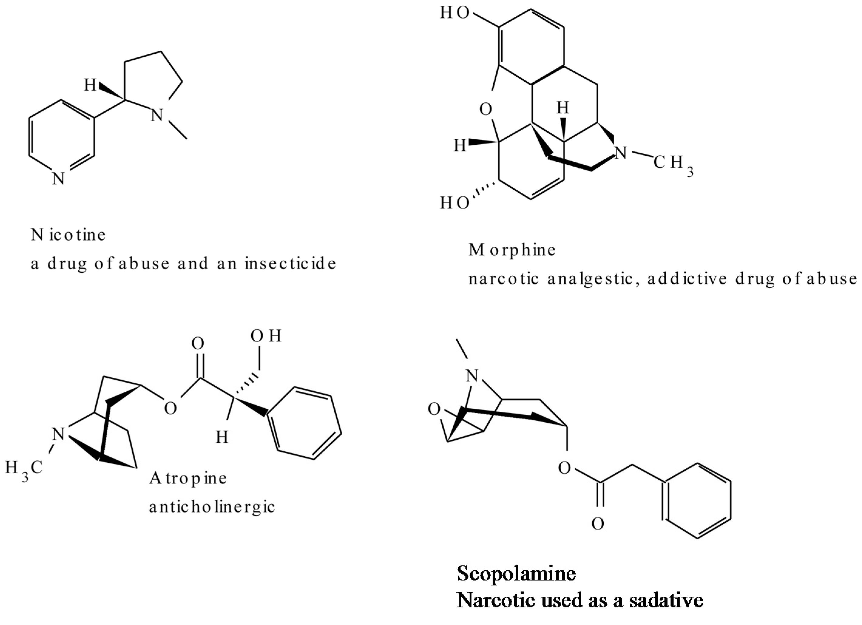vergiften mit co2 holzkohle