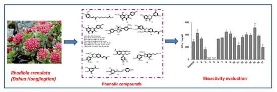 Molecules   Free Full-Text   Phenolic Compounds from the