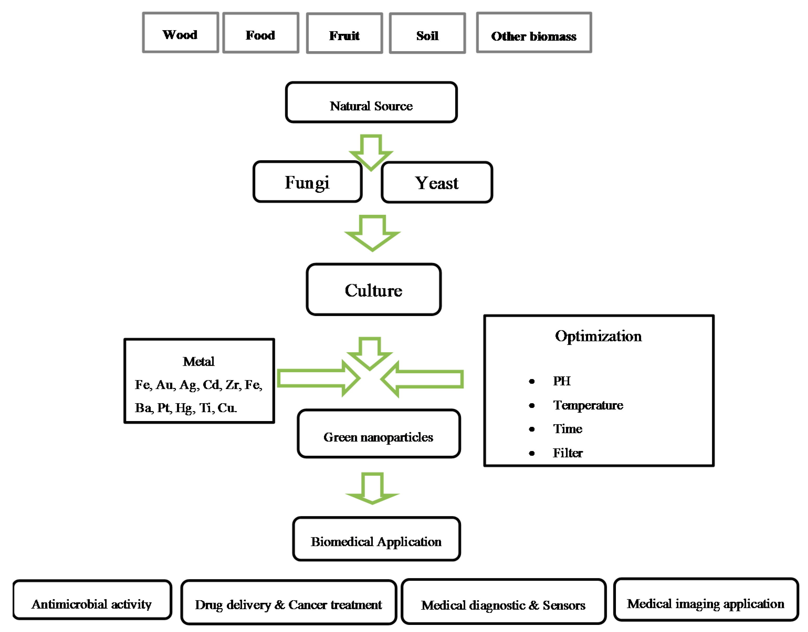 medical application of enzymes