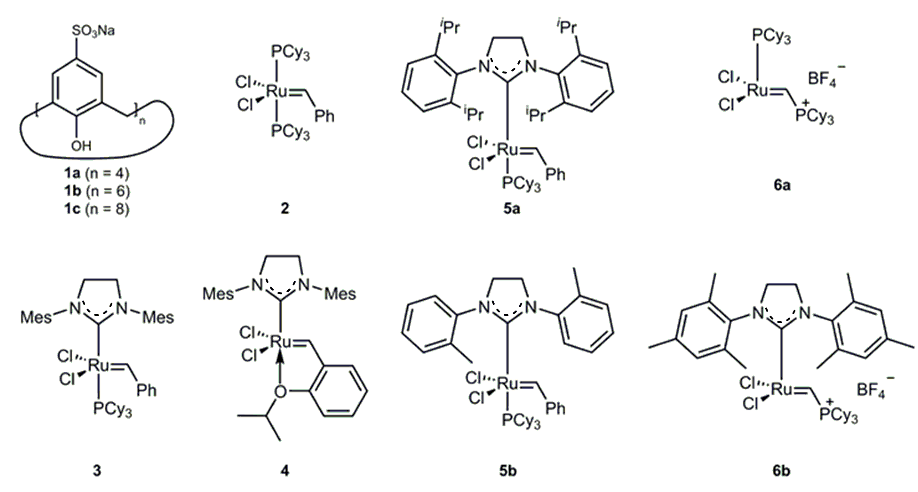 grubbs ring closing metathesis This review highlights developments in the field of ring-closing metathesis applied to the synthesis of cyclic peptides  grubbs and co-workers  an orthogonal.