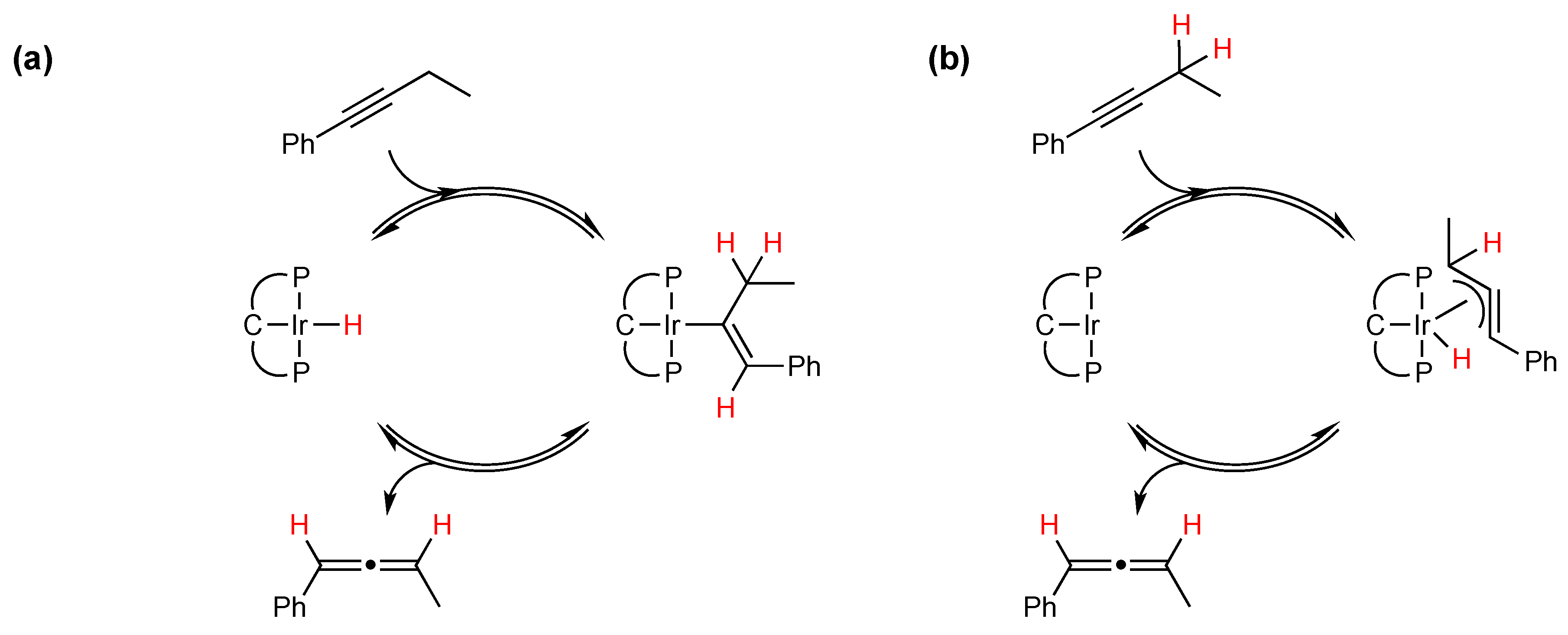 internal in c
