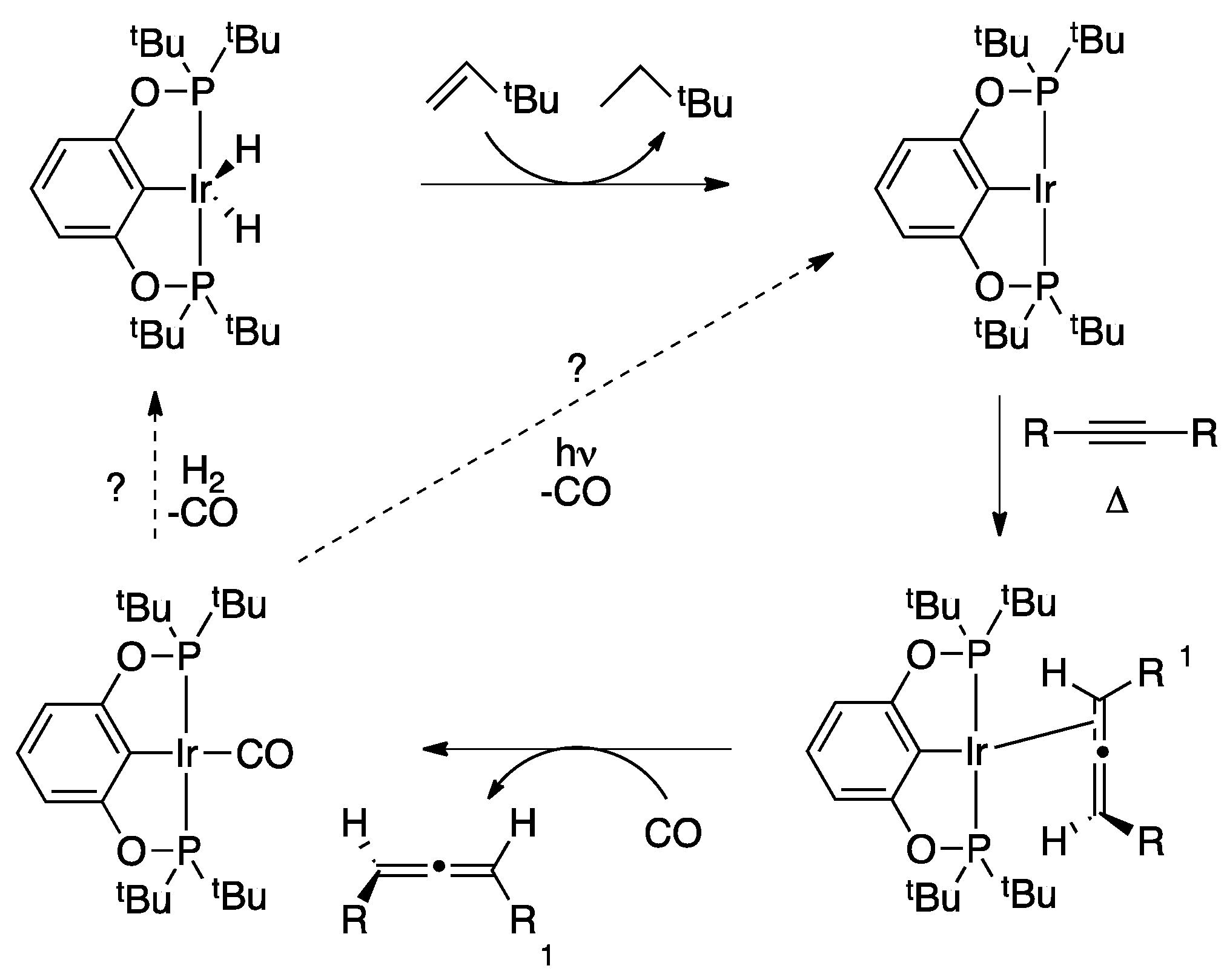sigma bond metathesis common Common olefin metathesis catalysts 1 covalent sigma bond to more active catalyst makes functionalized cross- metathesis possible.