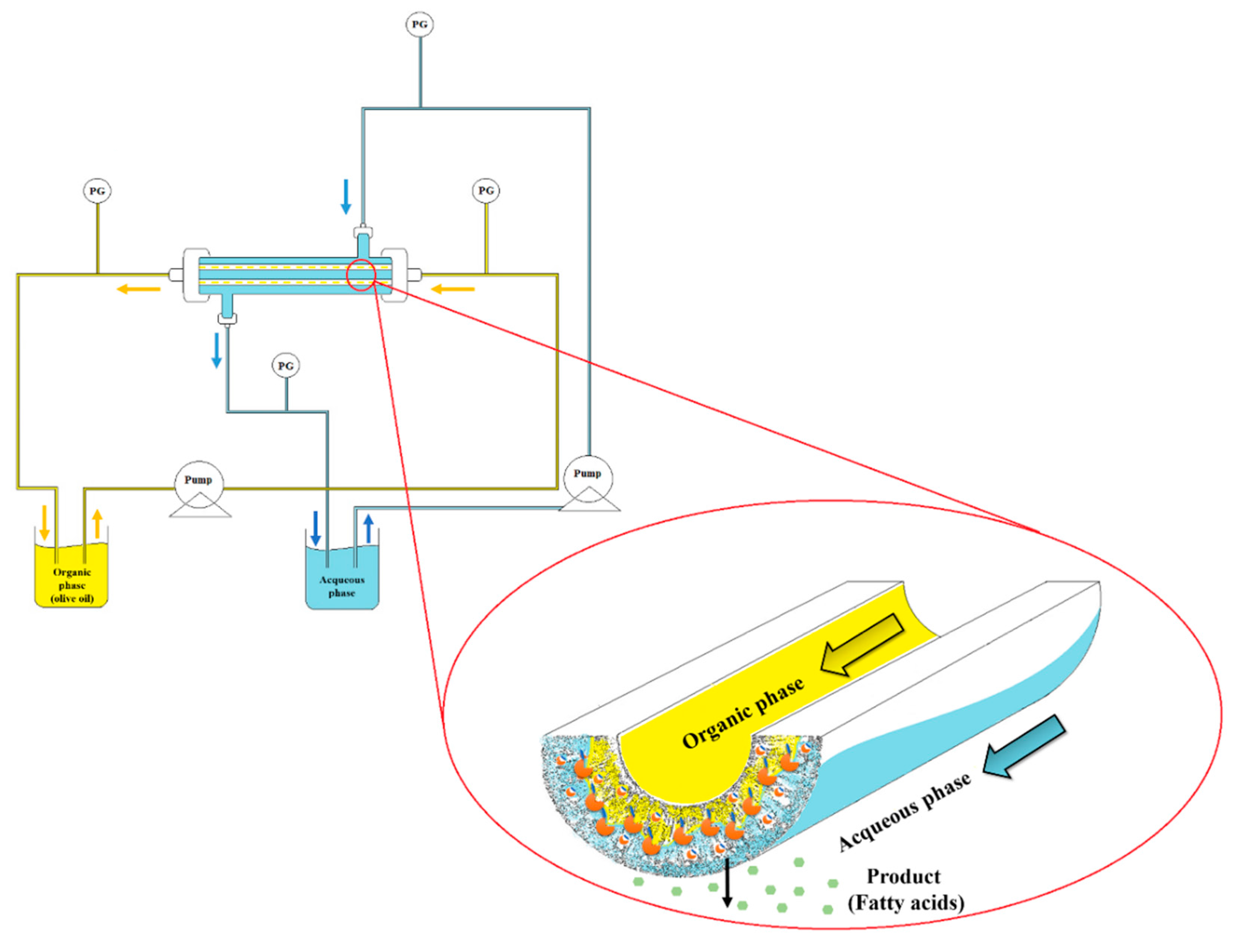 Molecules Free Full Text Use Of A Ceramic Membrane To Improve Wiring Diagram Also Vacuum Pump On Case Gas 21 00345 G005