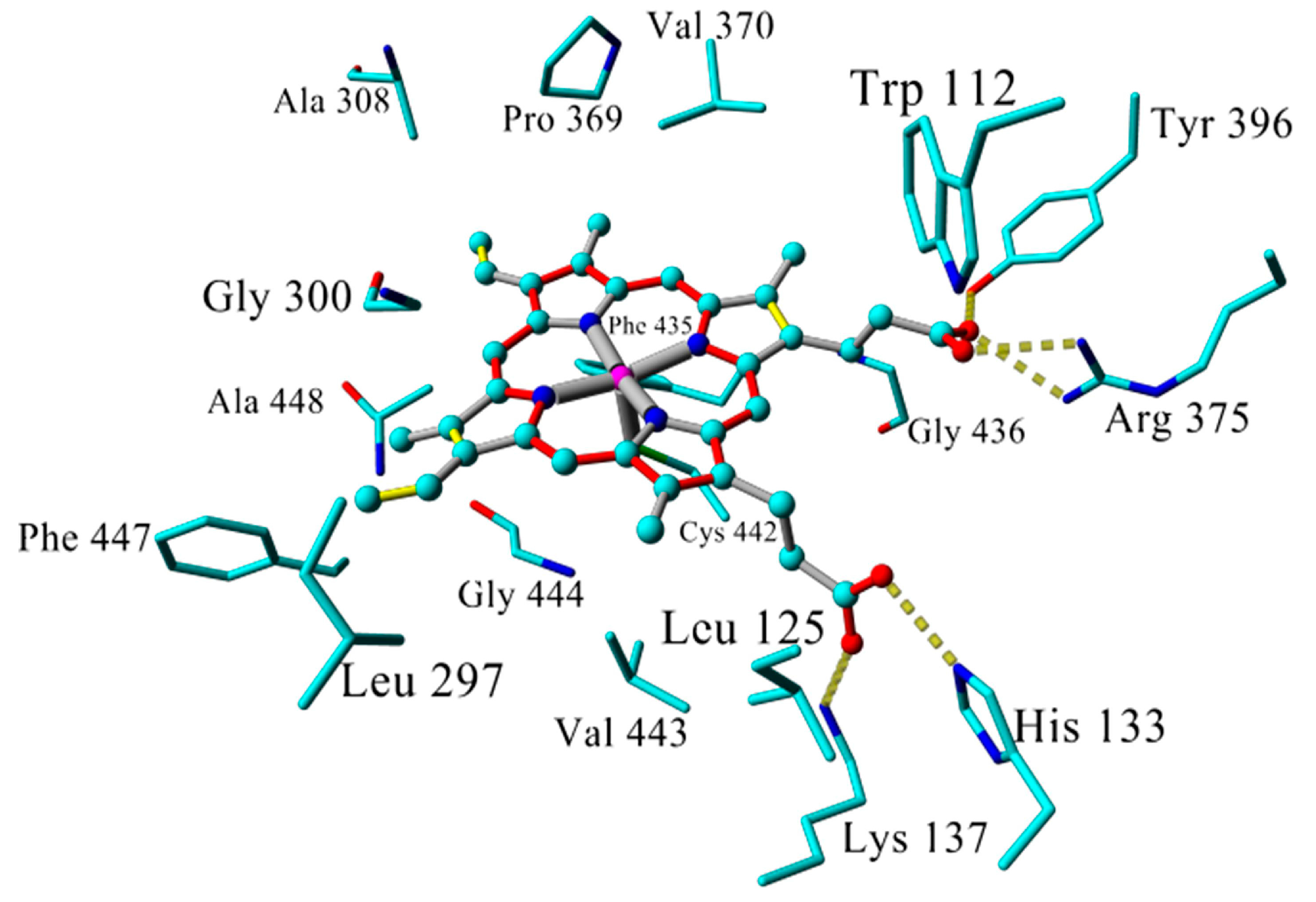 Molecules | Free Full-Text | Improved Homology Model of the