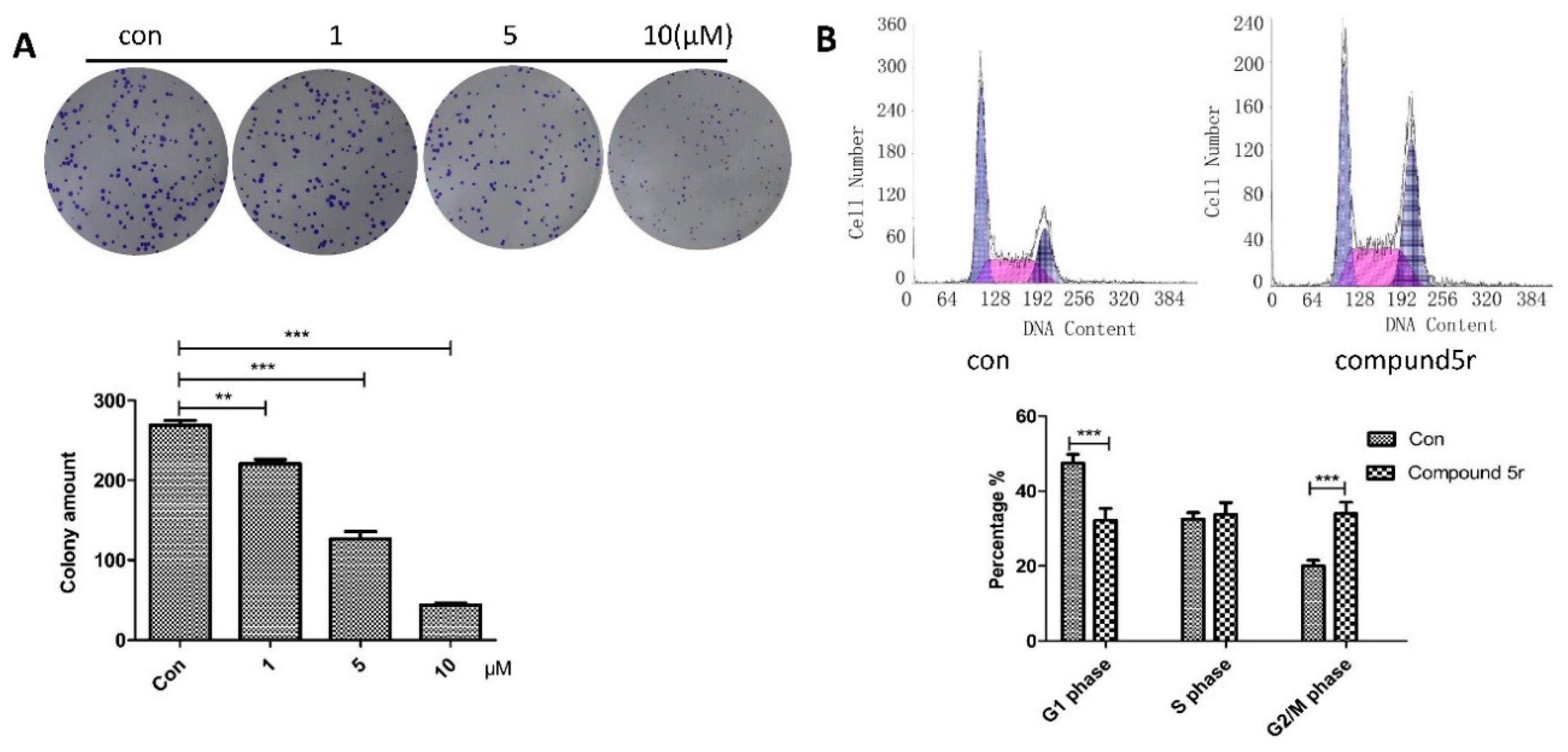 Sample Essay on Protease Inhibitor