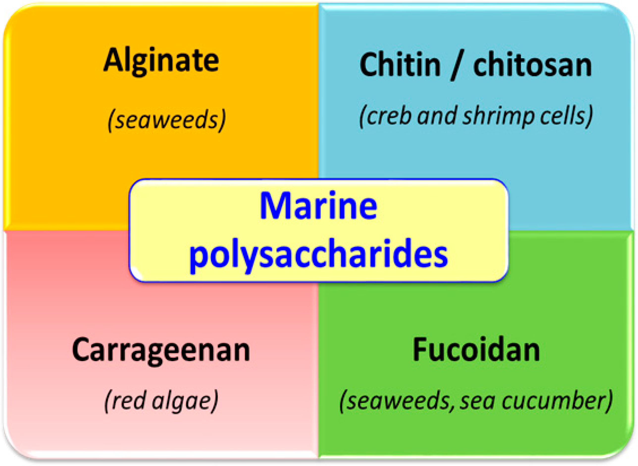 Molecules Free Full Text Polysaccharides From The Marine