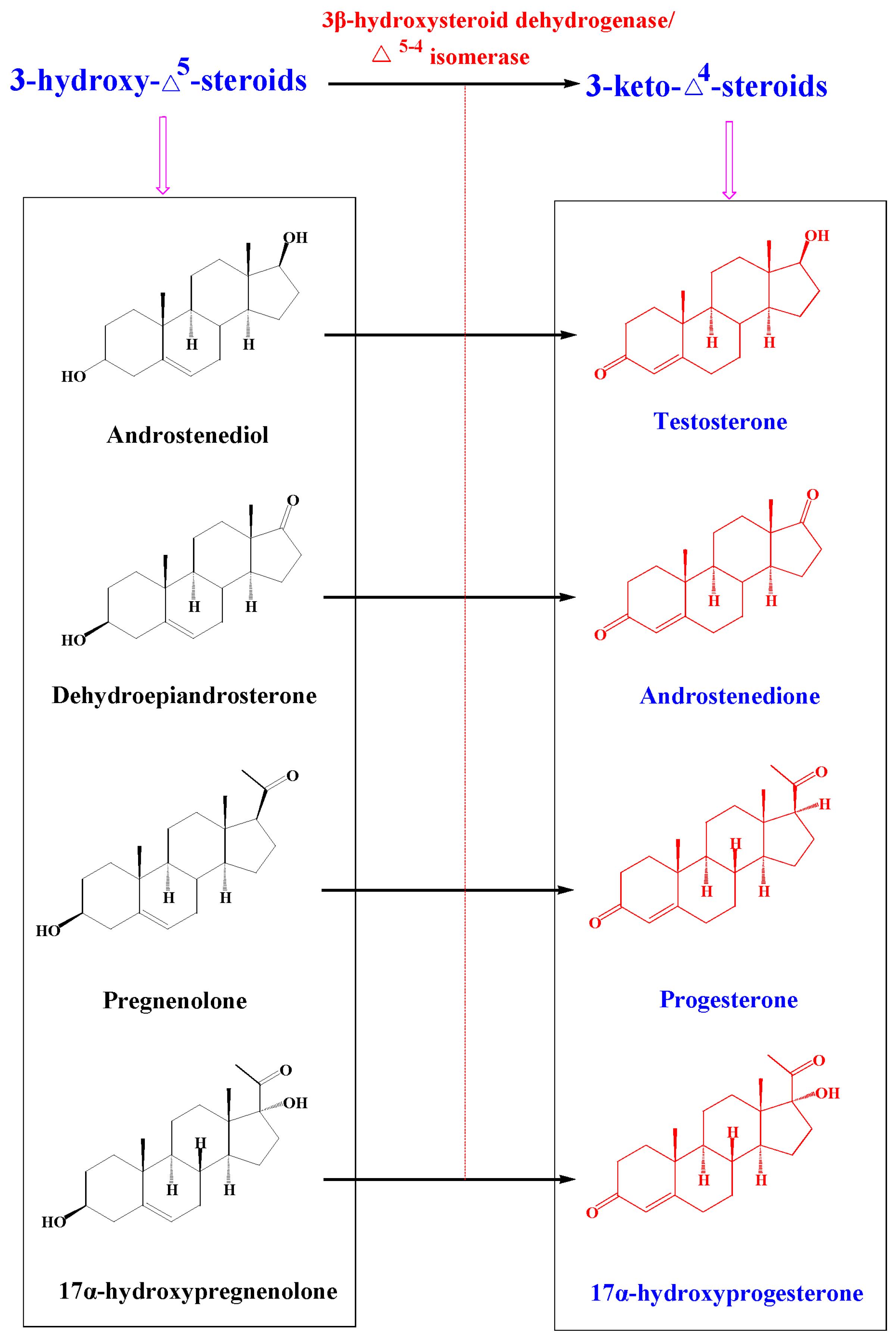 Molecules Free Full Text