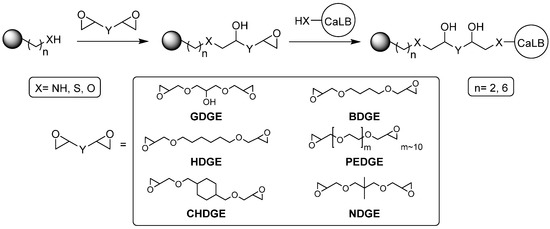 Molecules   Free Full-Text   Tailoring the Spacer Arm for