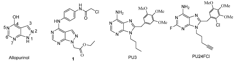 tinidazole plasma half life