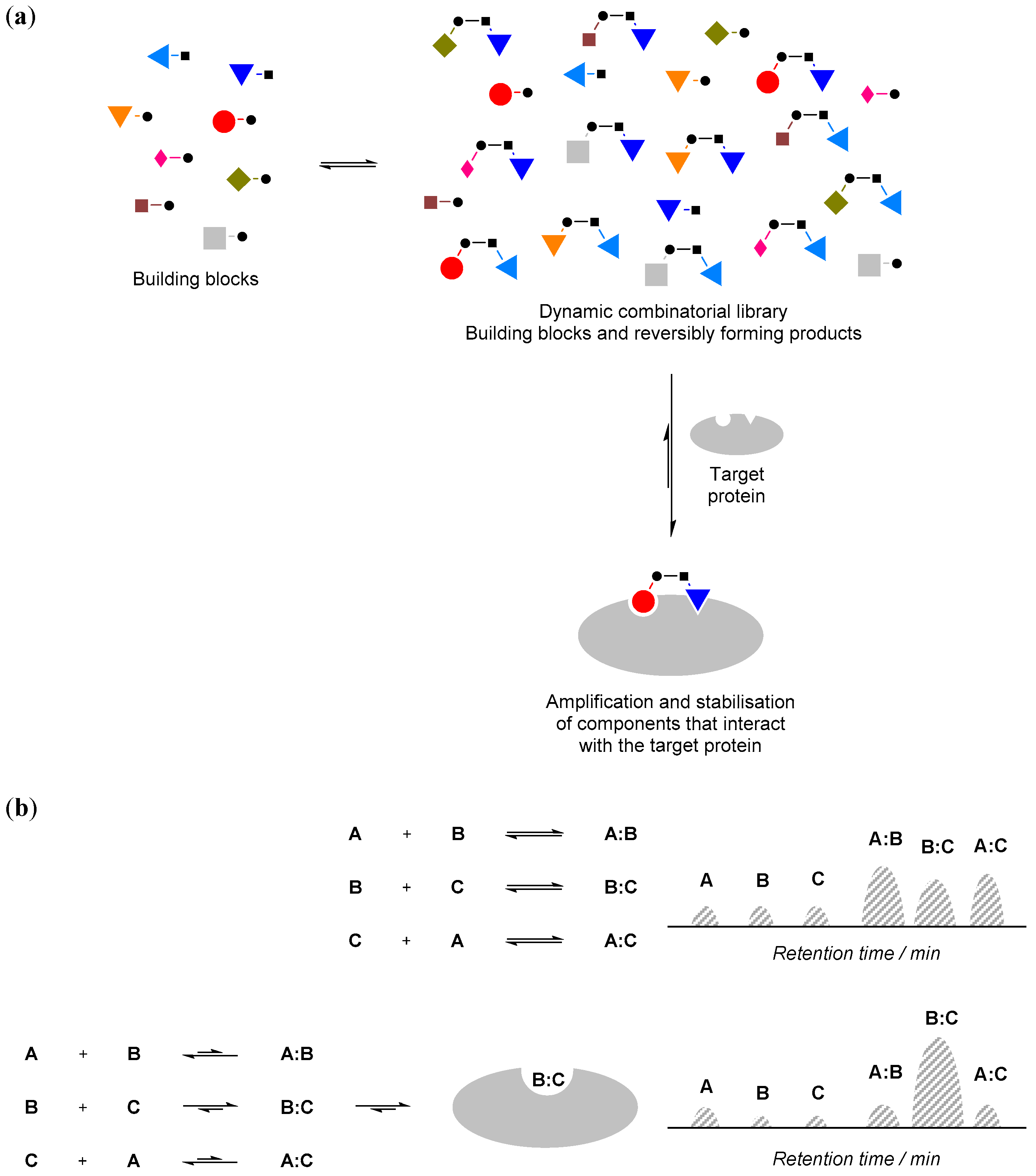 Molecules | Free Full-Text | Protein-Directed Dynamic Combinatorial