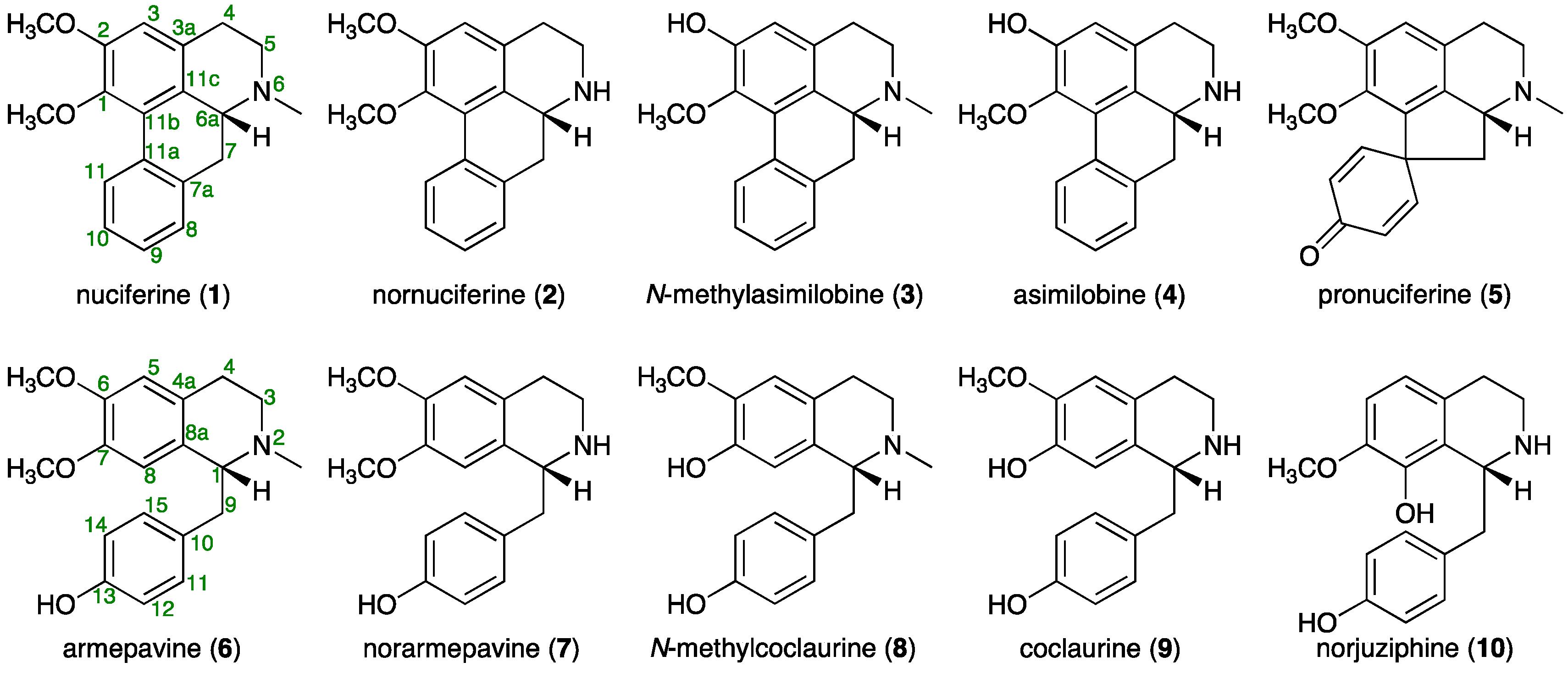Molecules free full text quantitative determination of alkaloids no ccuart Choice Image